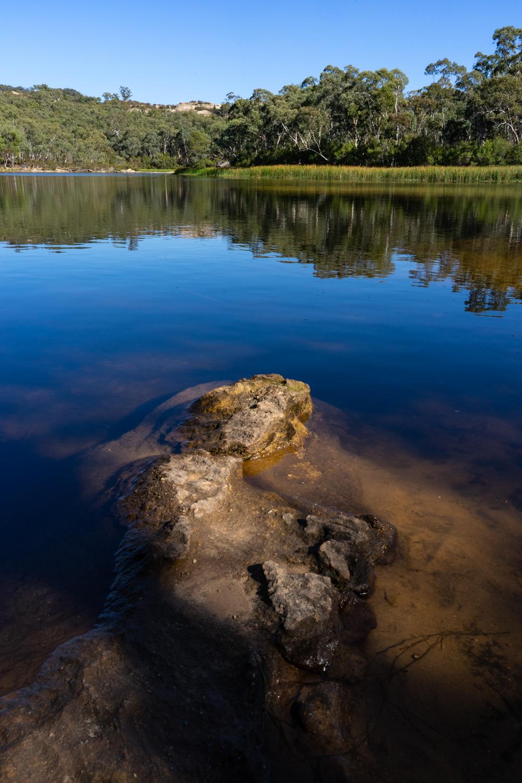 LONR - DunnsSwamp-10.jpg