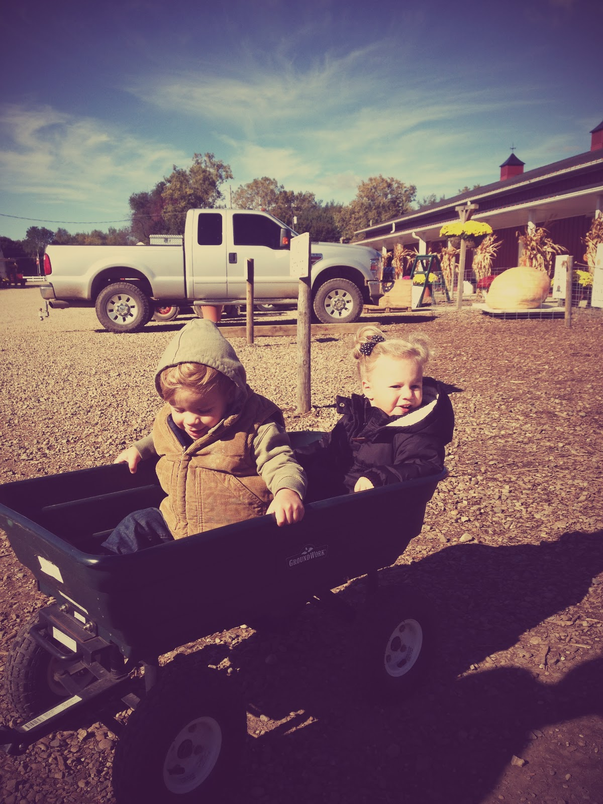 Roz & Cylic in wagon.jpg
