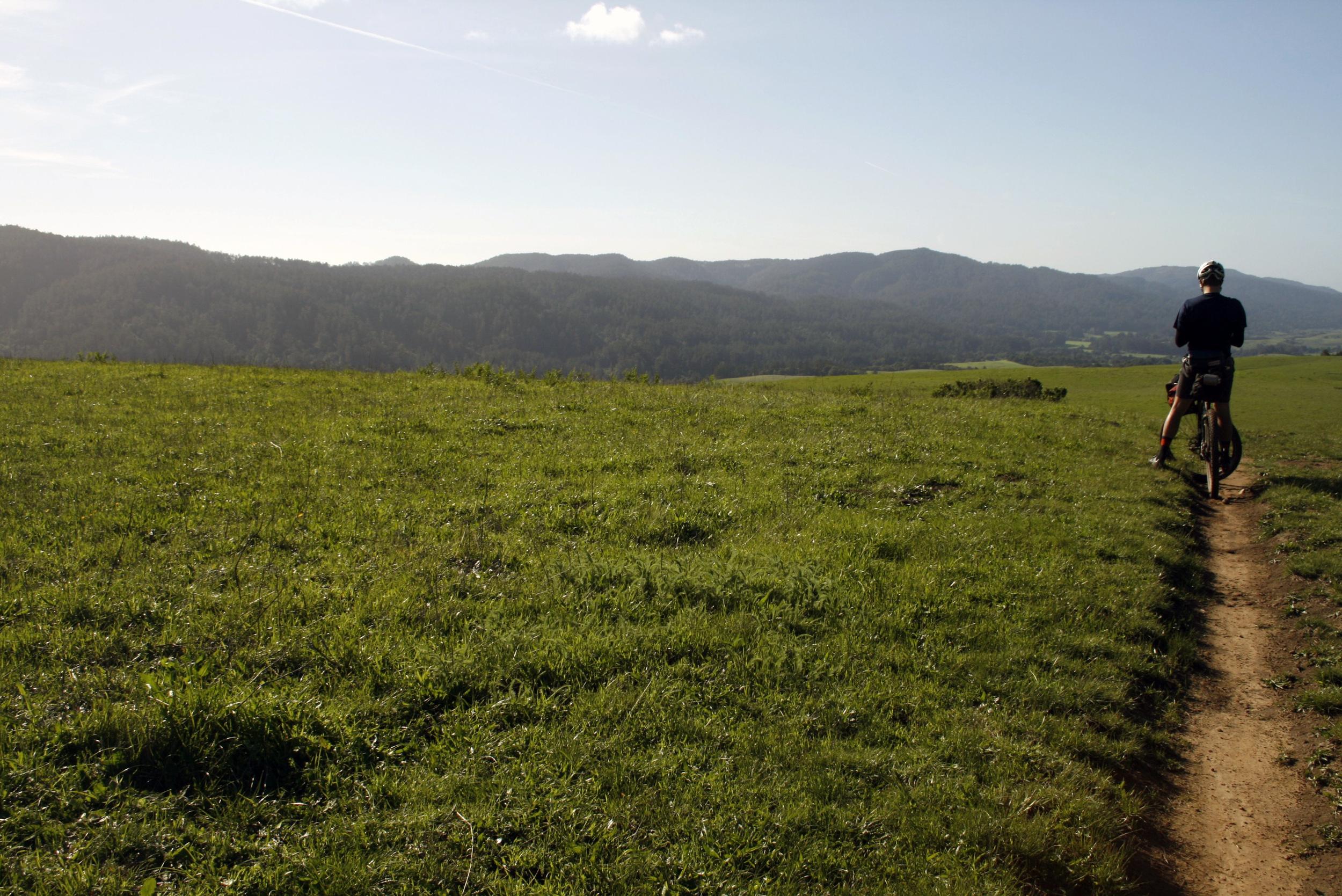 Open Grassy Ridge on Bolinas Ridge Rd.