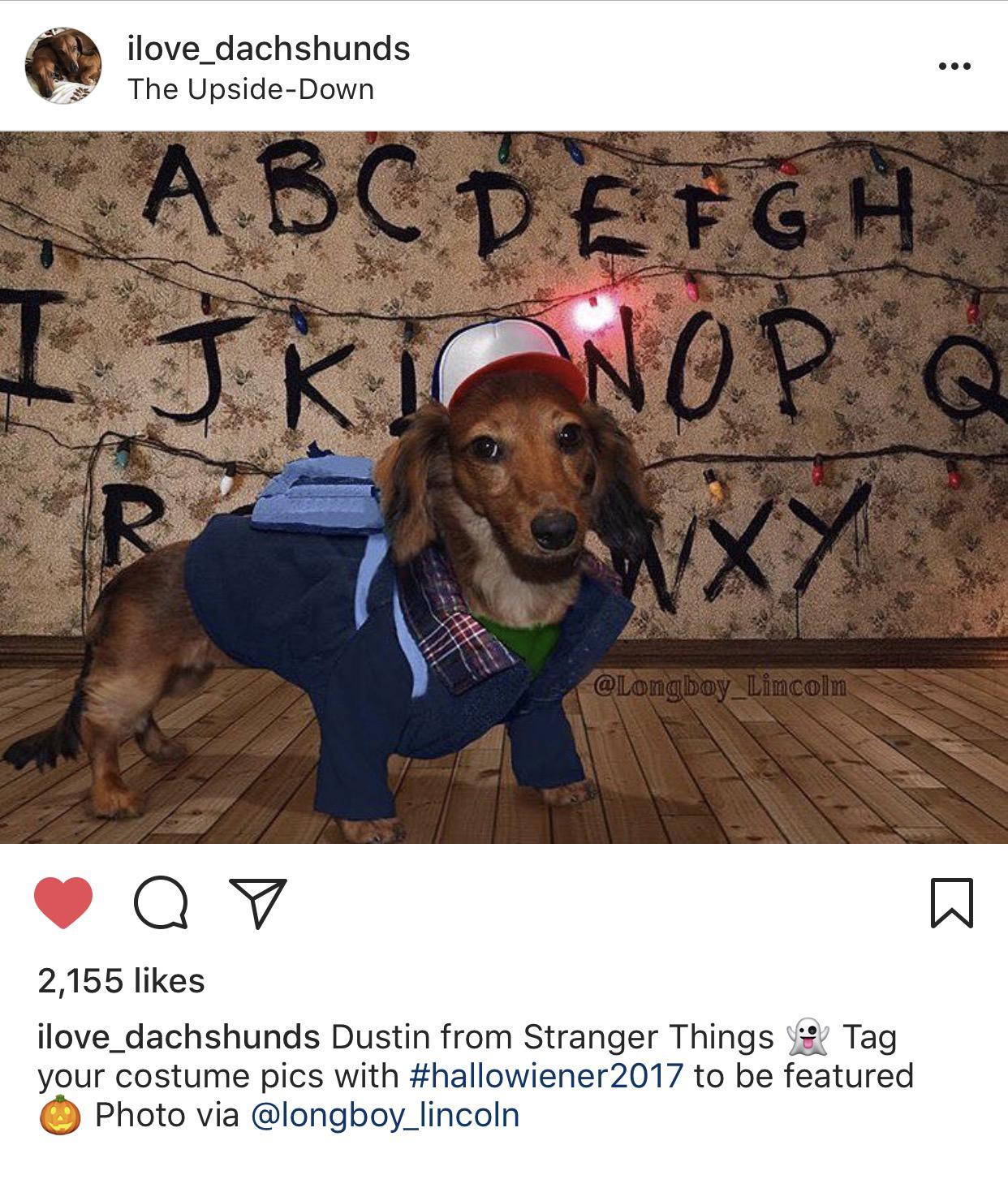 Dustin.jpg