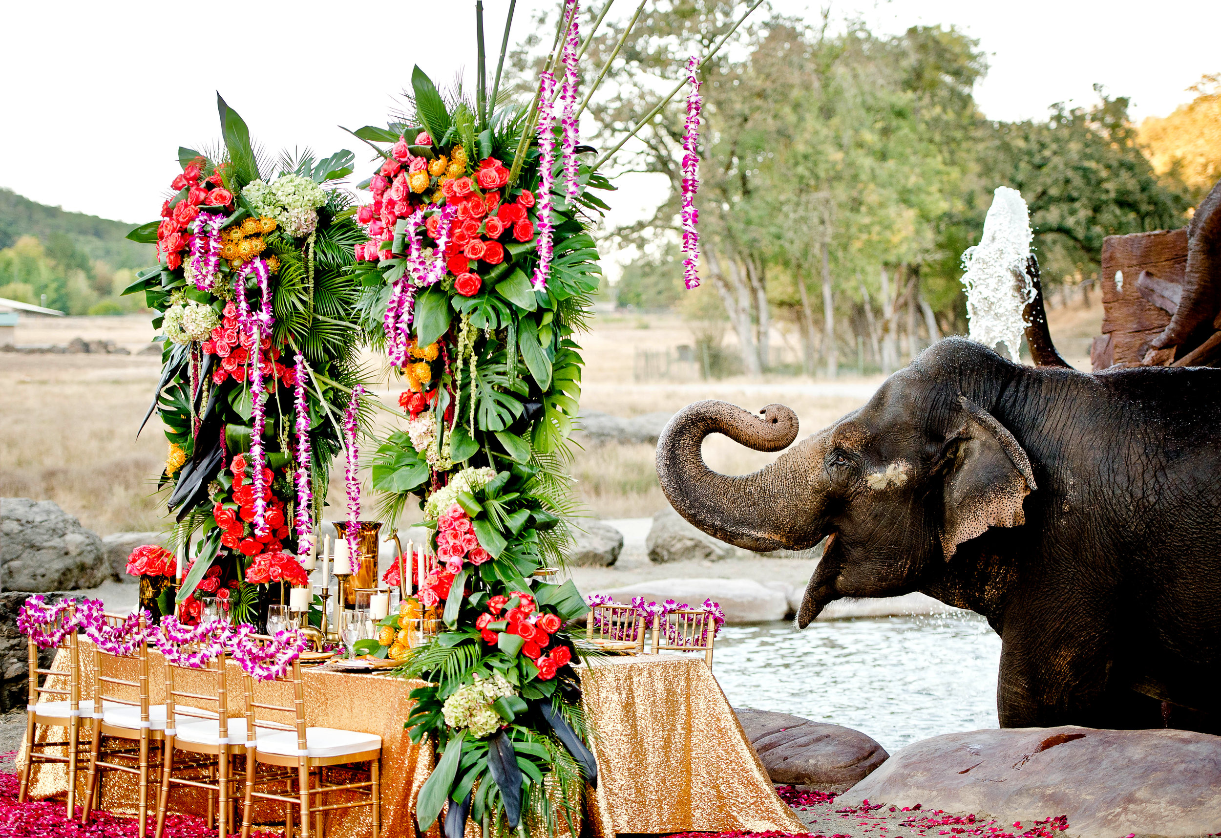 3353-moscastudio-the-perfect-occasion-grace-ormonde-wedding-style-editorial-20160825-PRINT-v2.jpg