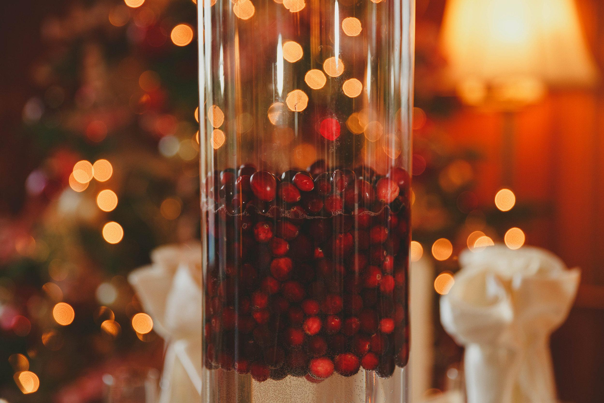 Falk Family Christmas Party-0064.jpg