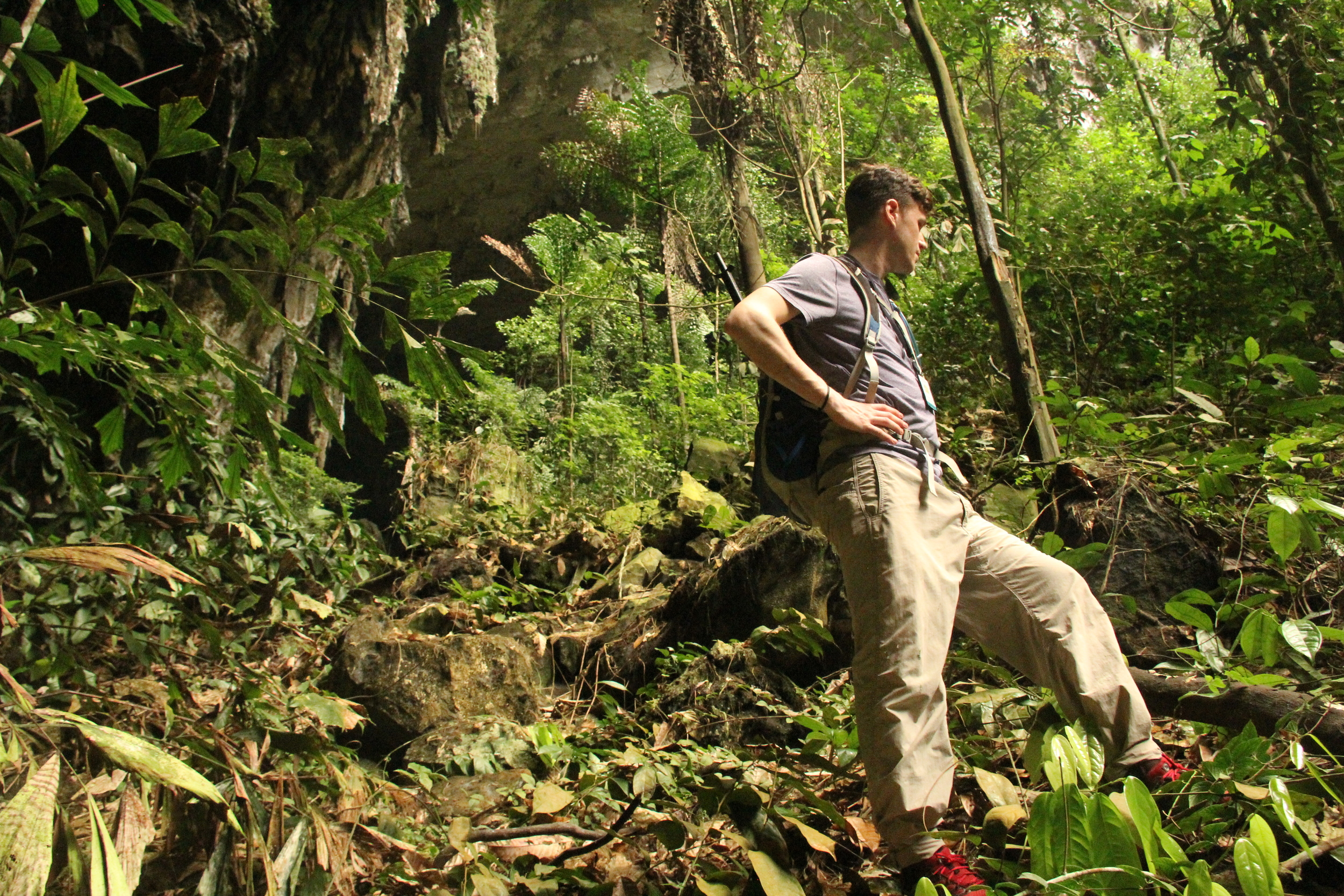 your intrepid explorer regally staring into space outside of Deer Cave, Mulu National Park. We were waiting for the sun to piss off so the bats would come out of the cave, and we could go looking for geckos without getting peed on. photo credit: Jackie Childers