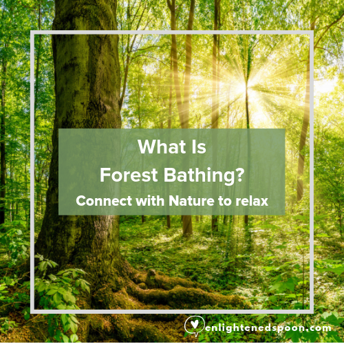 What is forest bathing? Connect with nature to relax