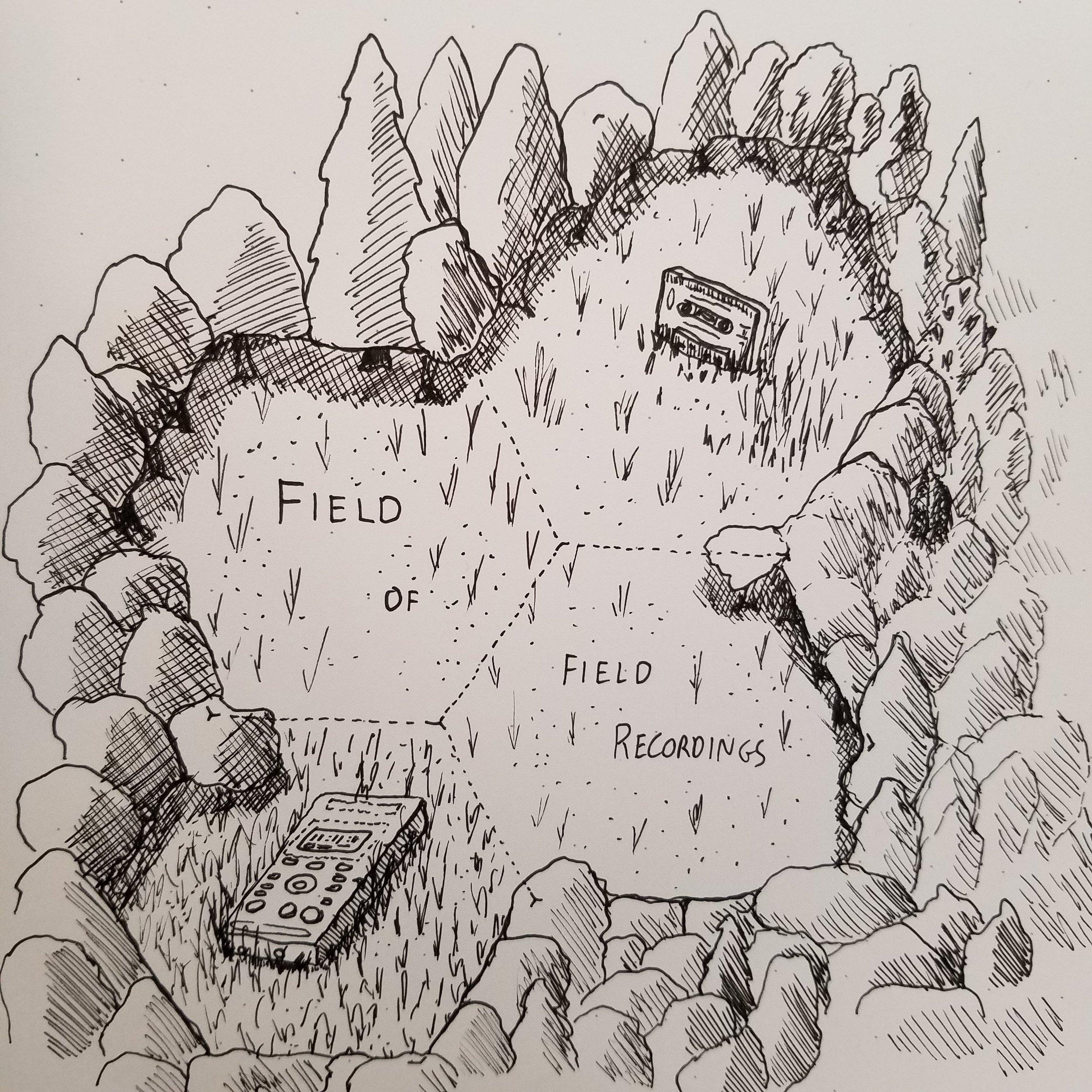 field of field recordings