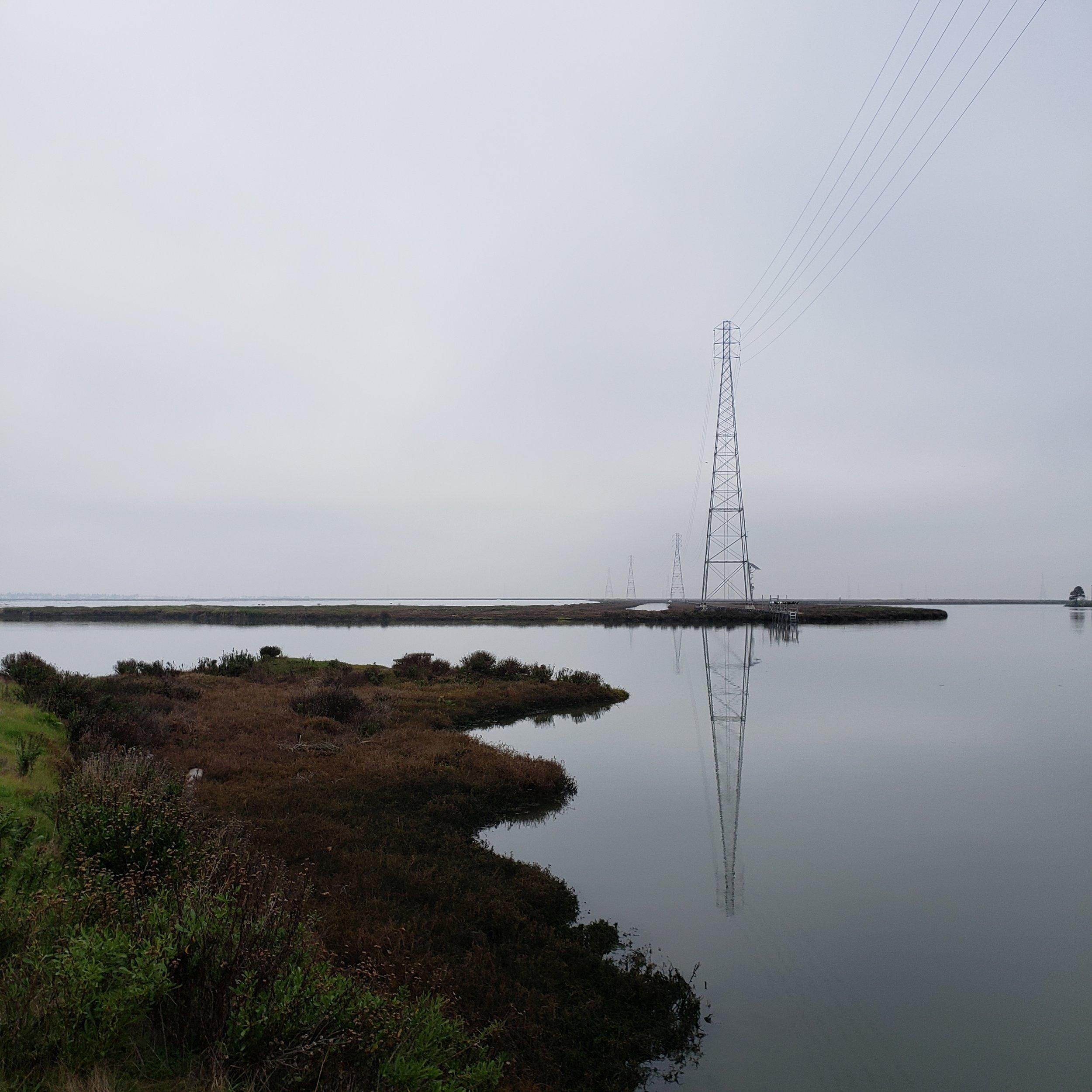 Bair Island