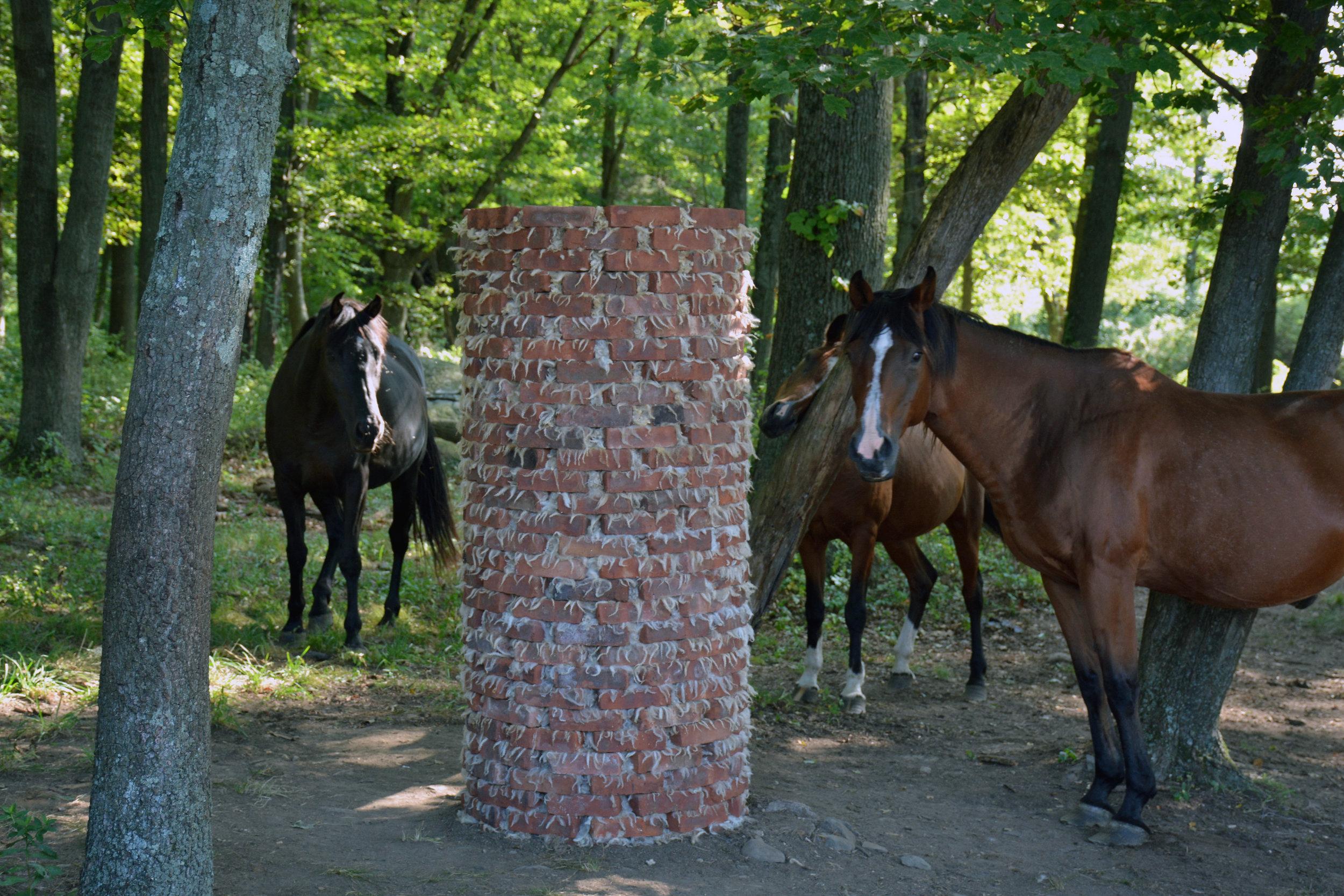 31_brick_3_horses.jpg
