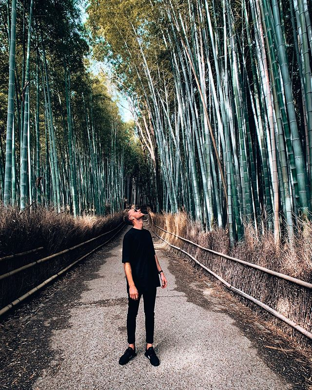 嵐山竹林🎋