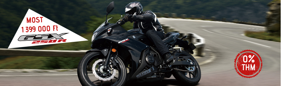 GSX 250R ABS (1).png