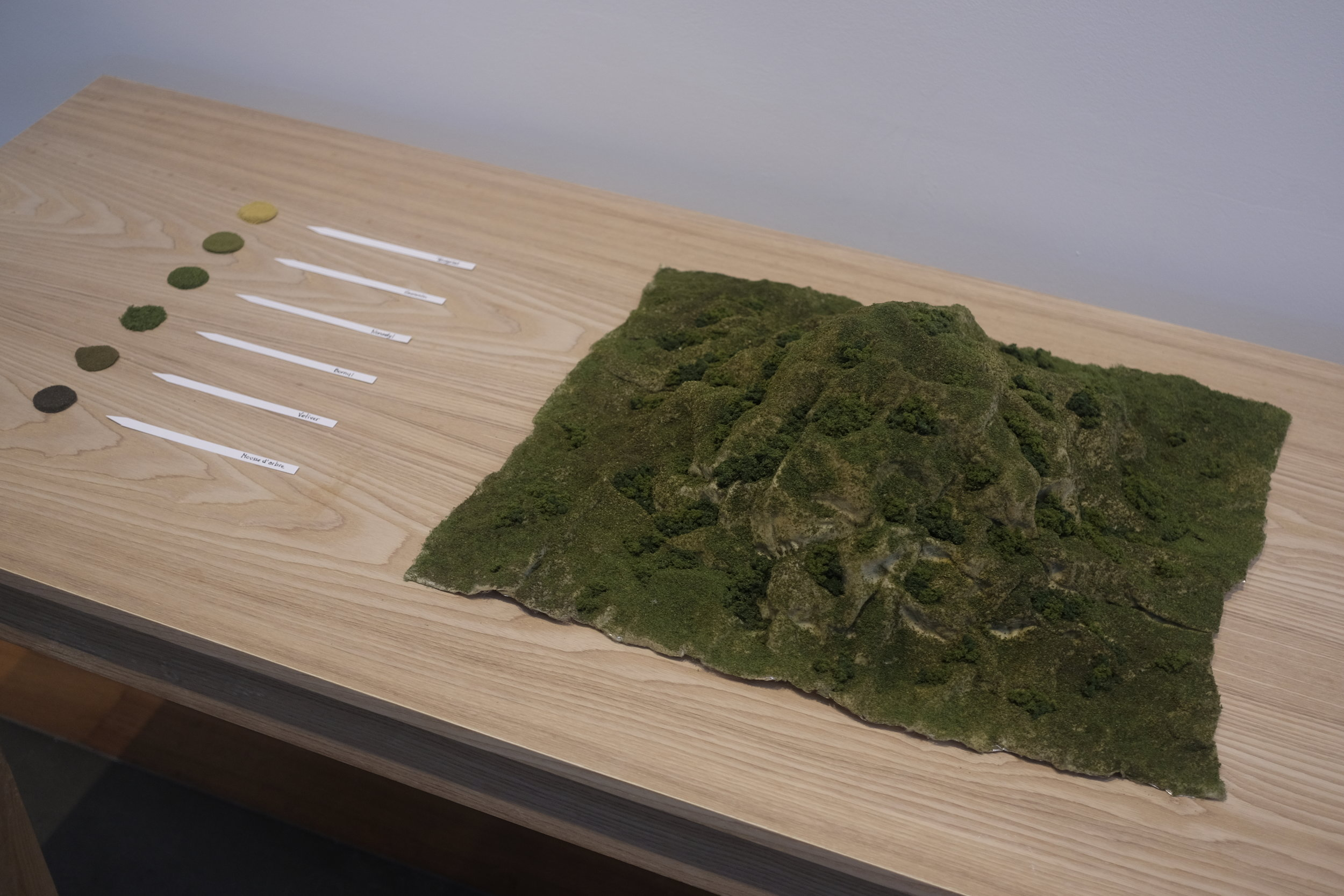 Maquette of the hill and layout of the different components of the scent
