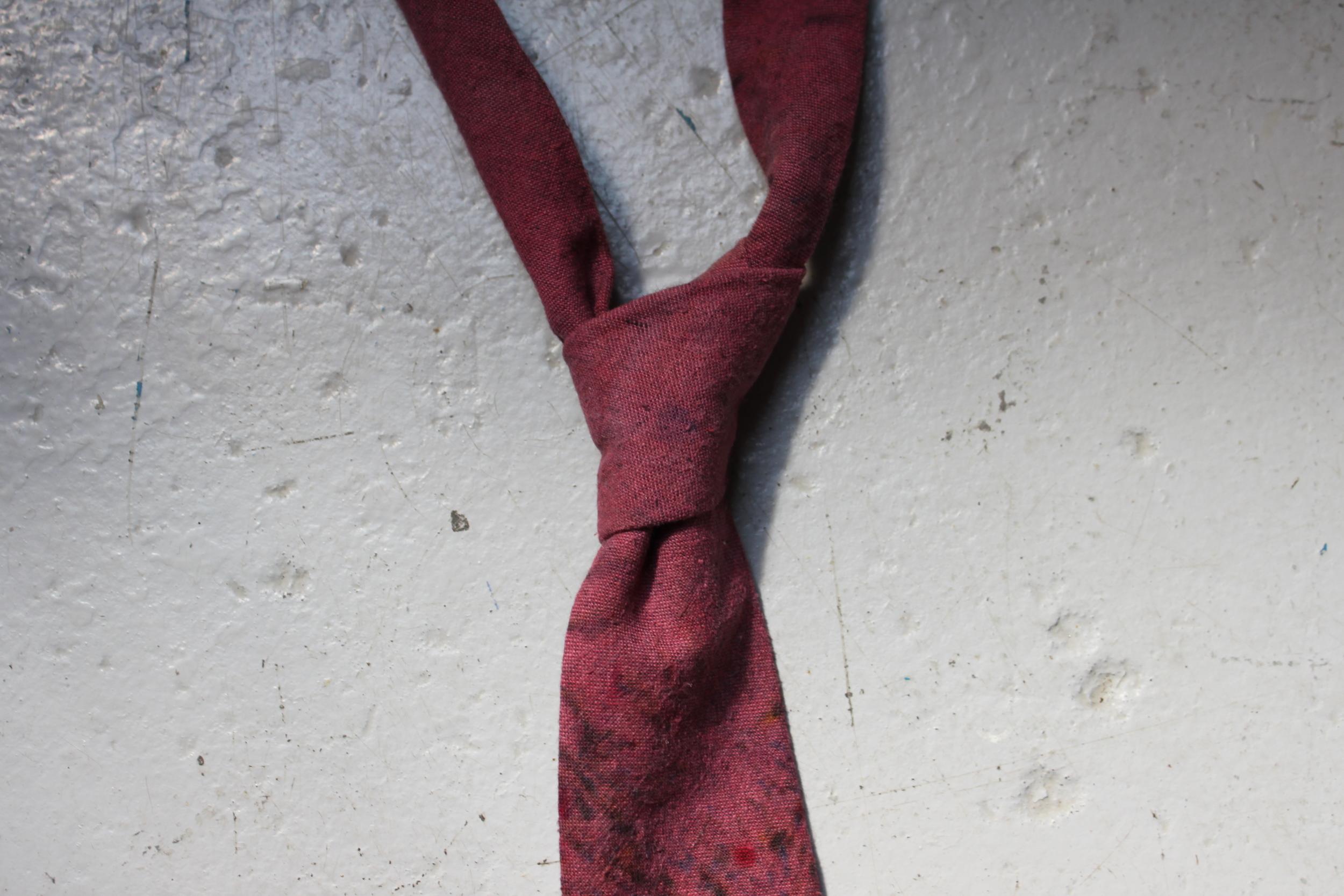 Speckled Plum Necktie
