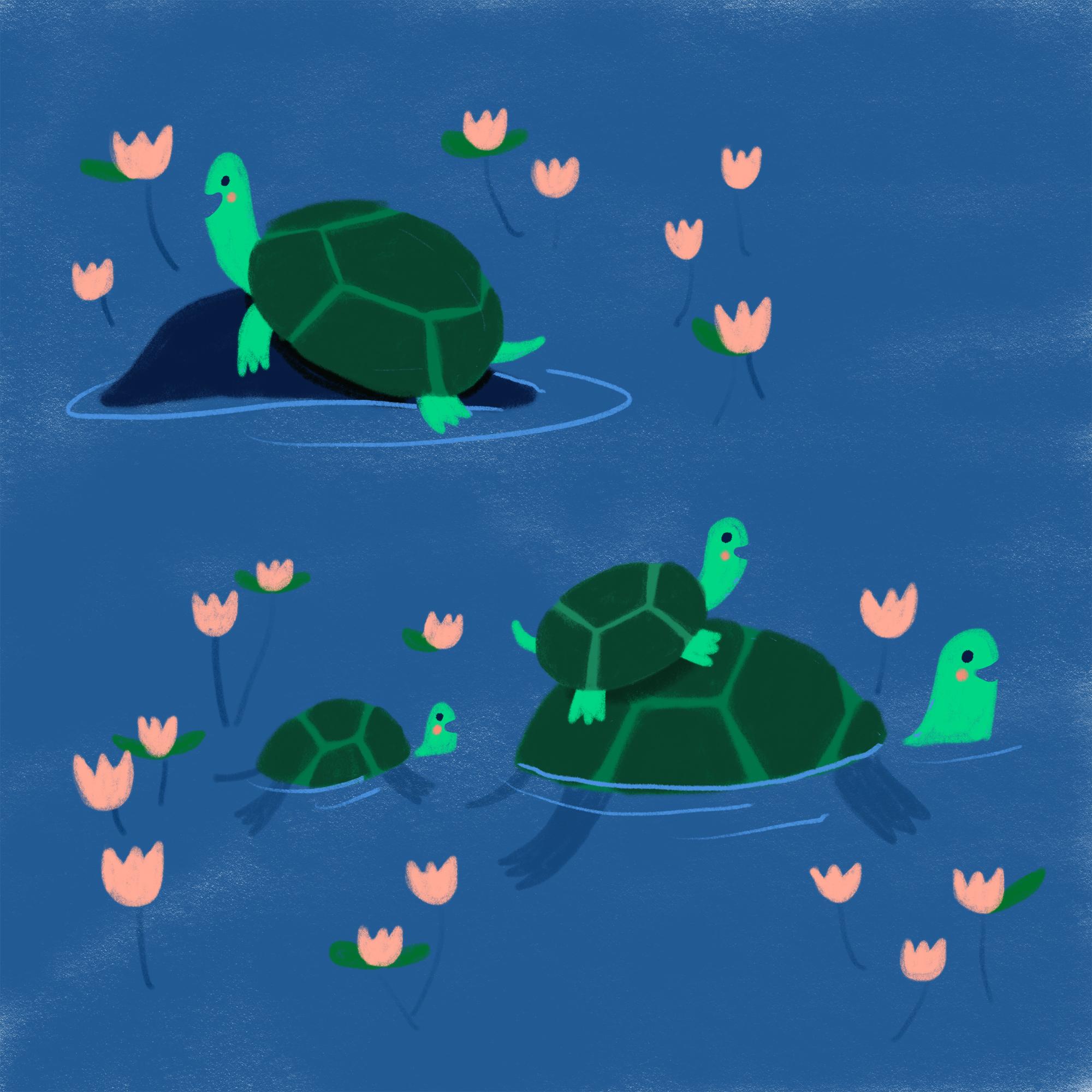Day_16_Turtles_Minted.jpg