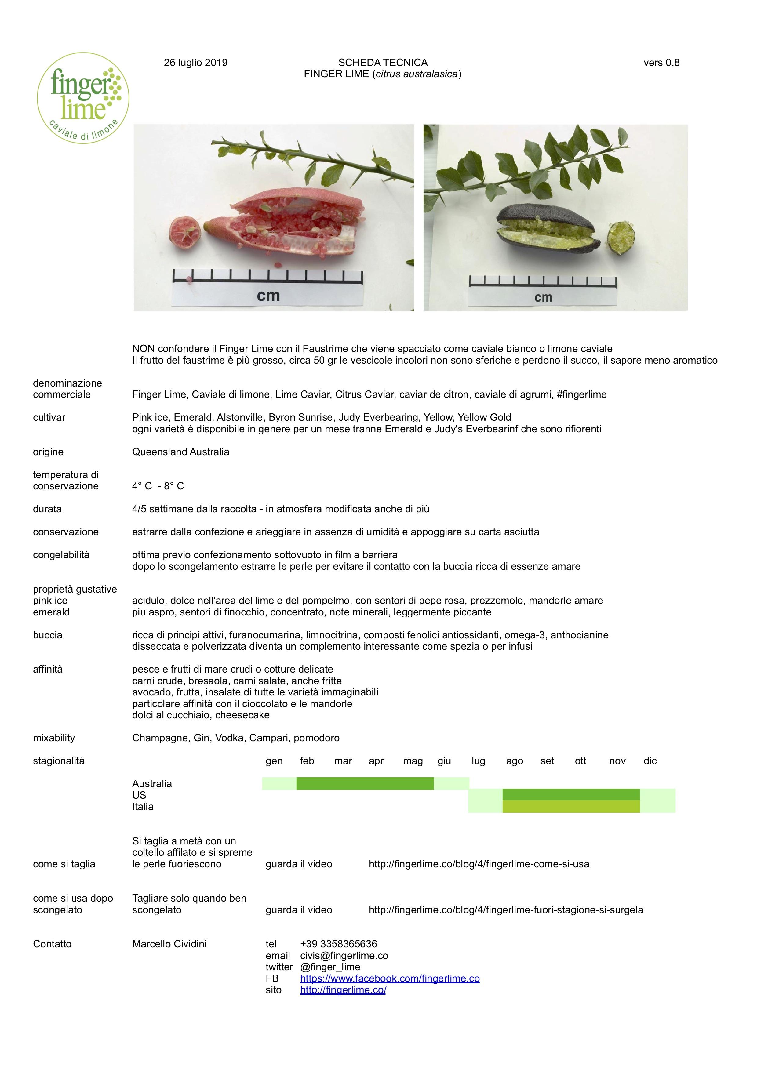 Scheda tecnica finger lime - Informazioni, dati e affinità relative all'uso in cucina e nel bar del finger lime