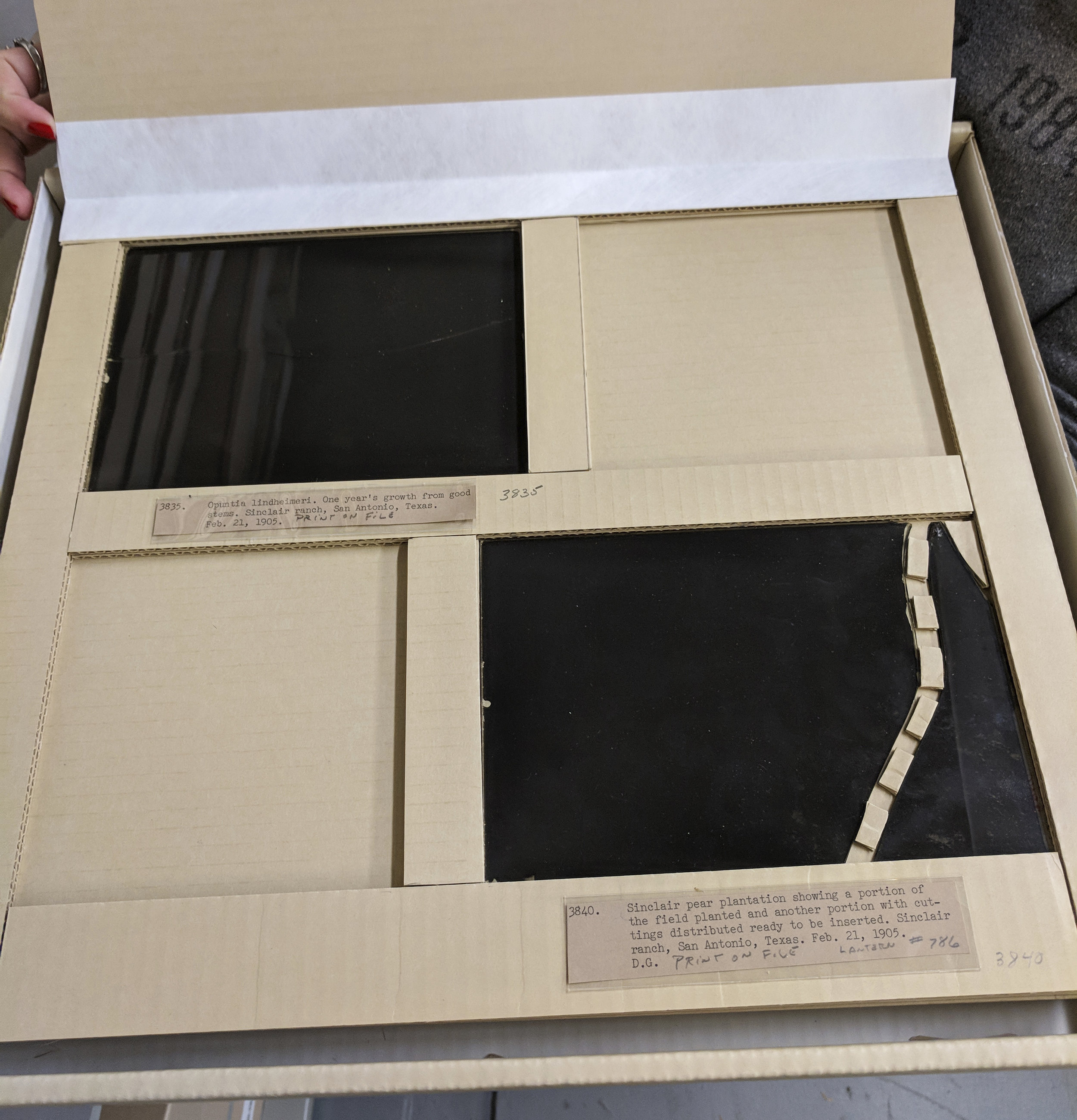 Custom housing for glass plate negatives