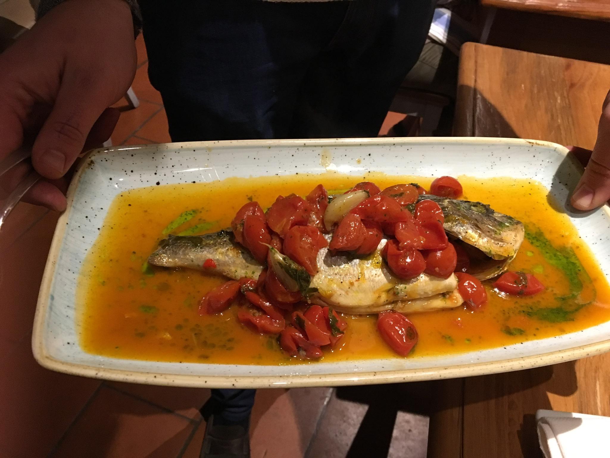 culinary-dream-italy.jpg
