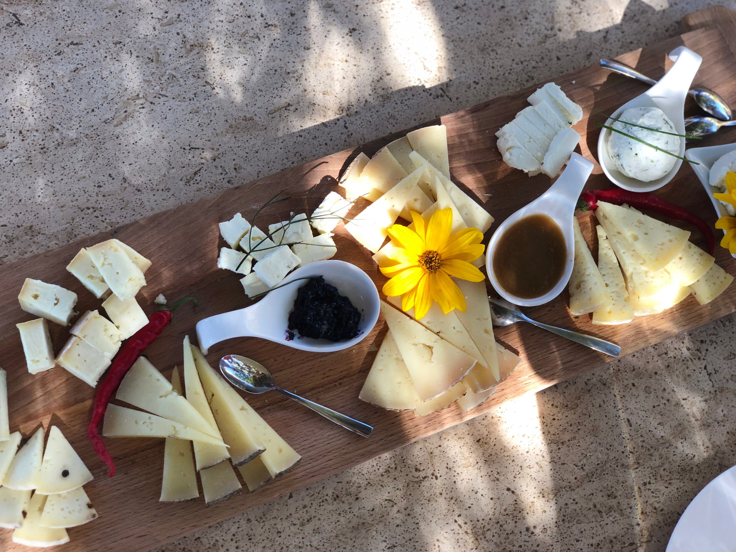 cheese-tasting-pienza.jpeg
