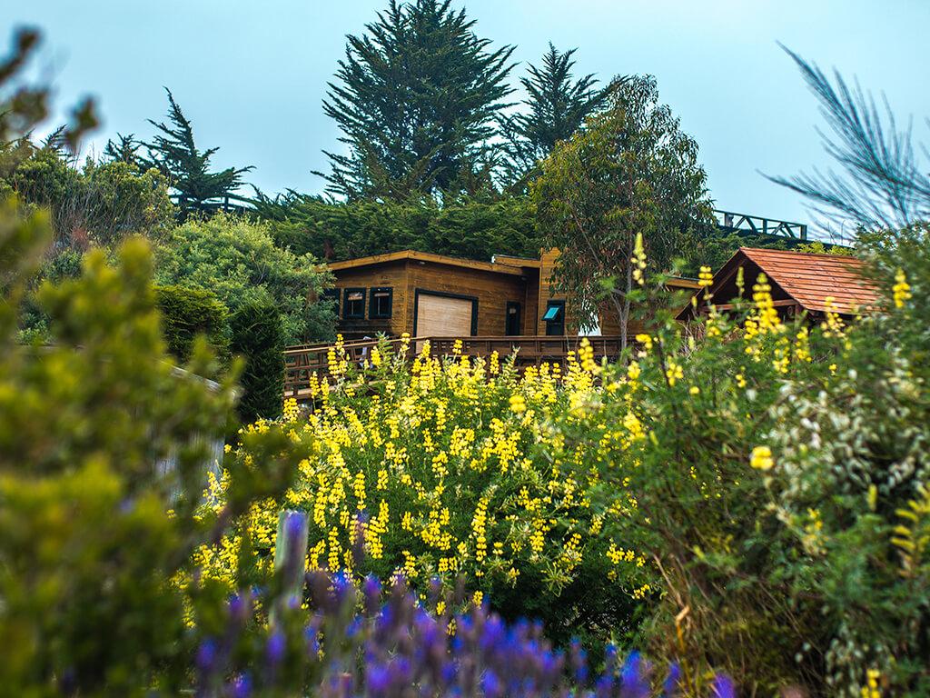 jardines-01.jpg