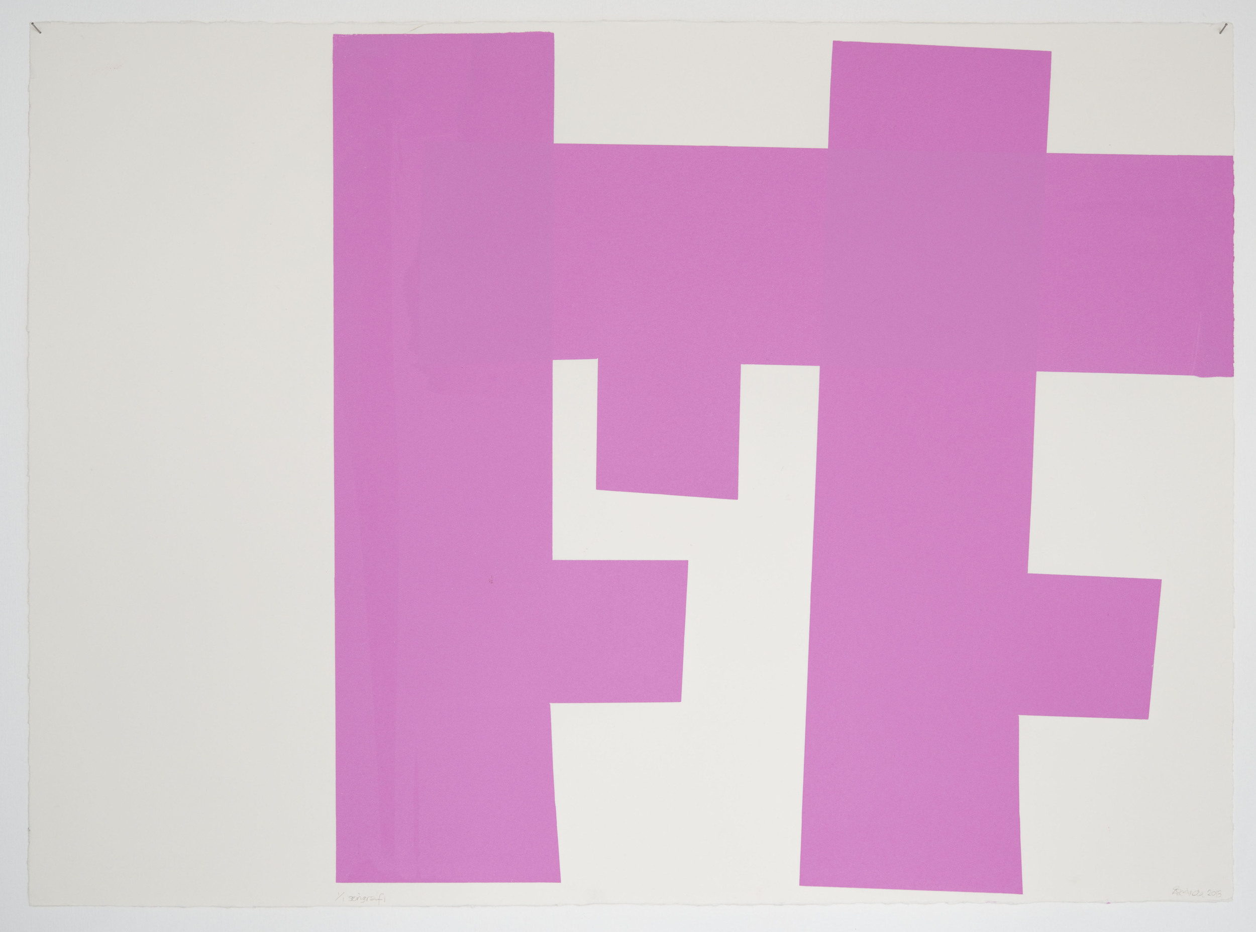 Pink animation3 56x77cm-6.jpg