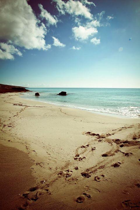 santaibiza_beach__09.jpg