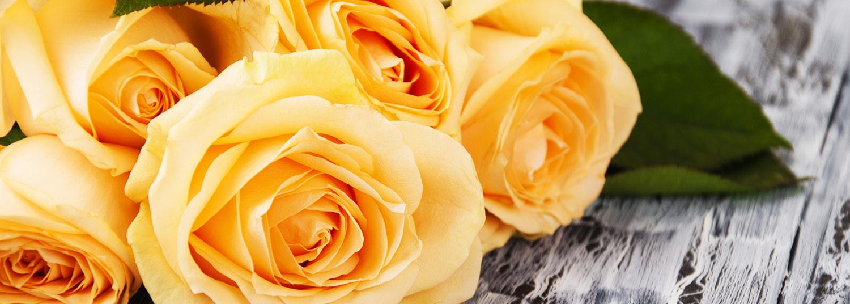 Rose Oxide 90:10