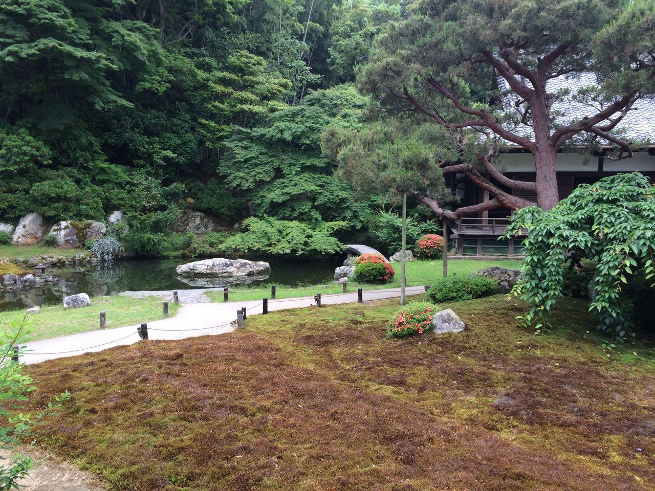 Pond at Eikan-do