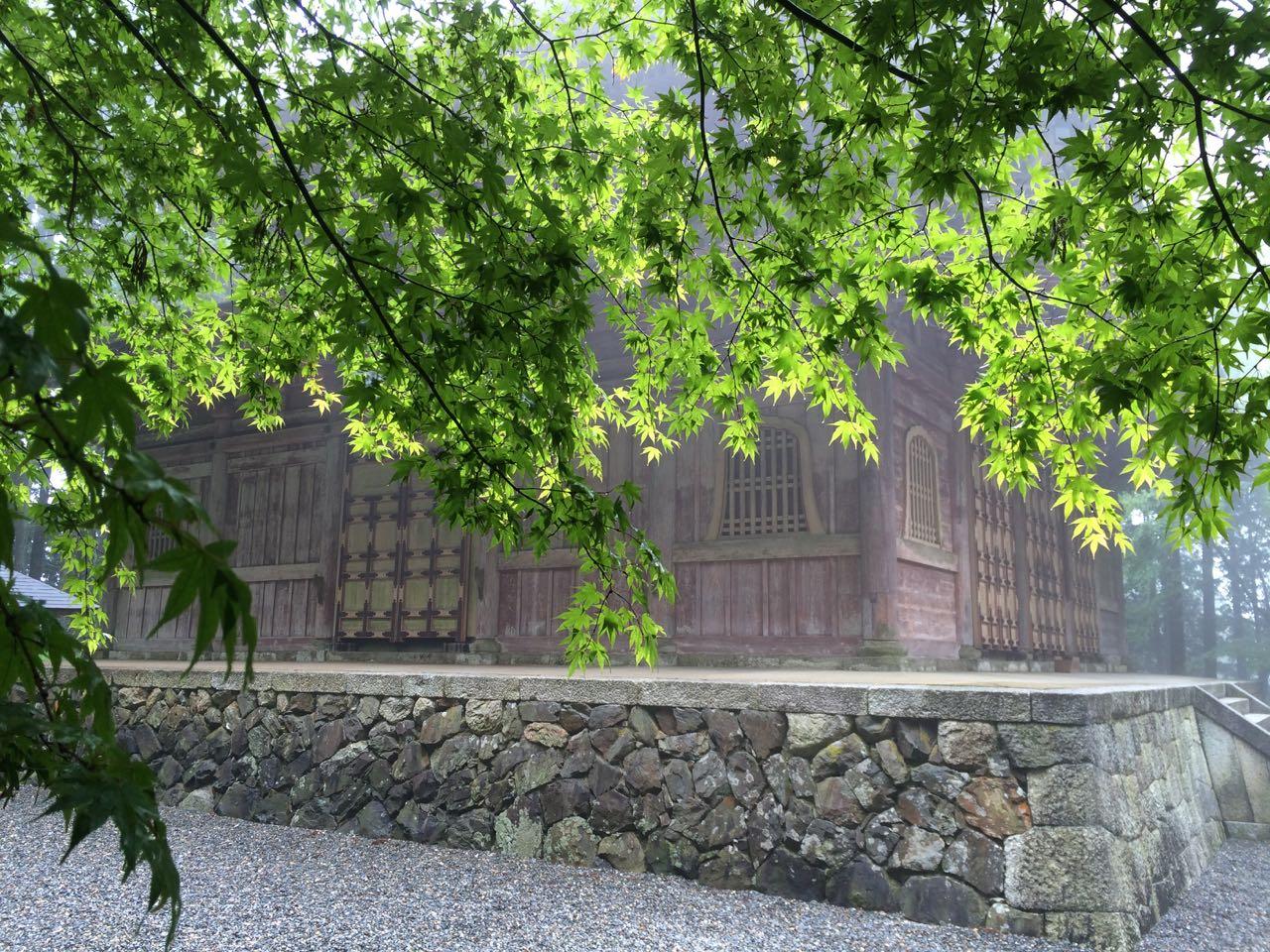 Maple leaves in front of Enryaku-ji