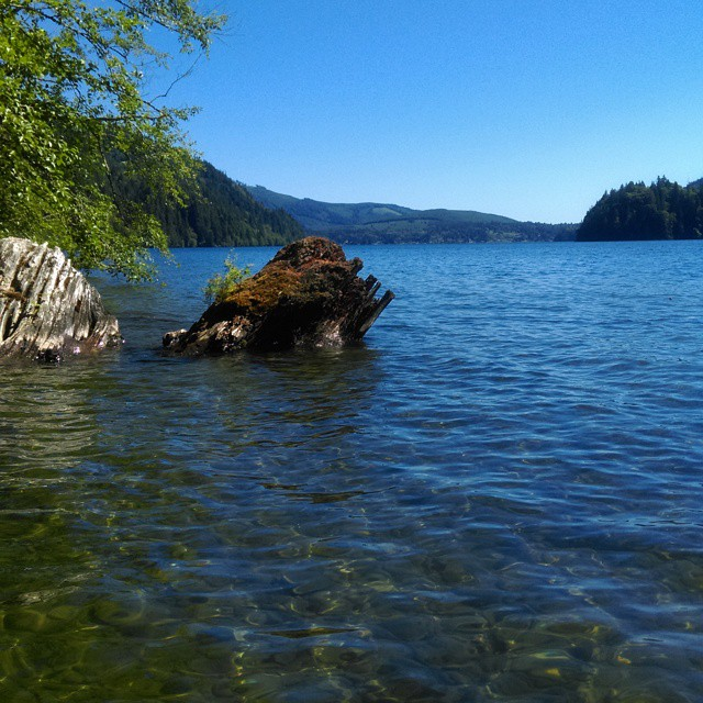 North Shore, Lake Whatcom.Photo by my sister (and birthday girl) Emily .