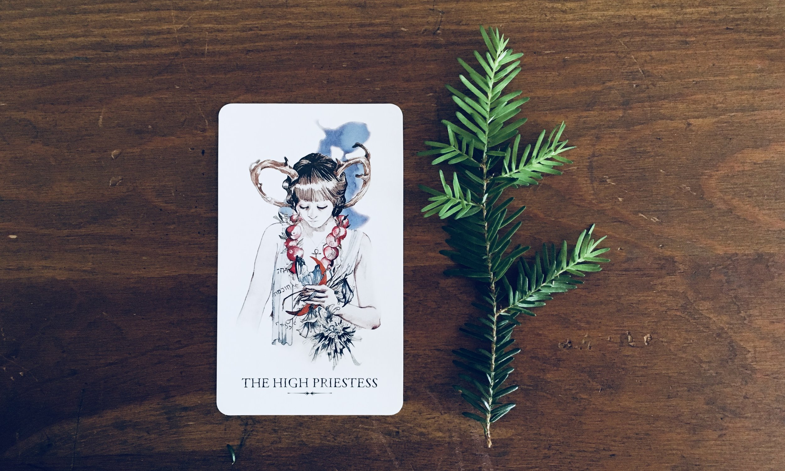 Find your tarot birth card to read my one-of-a-kind horoscopes.