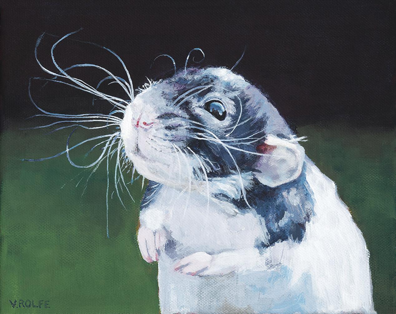 Wonderful Whiskers