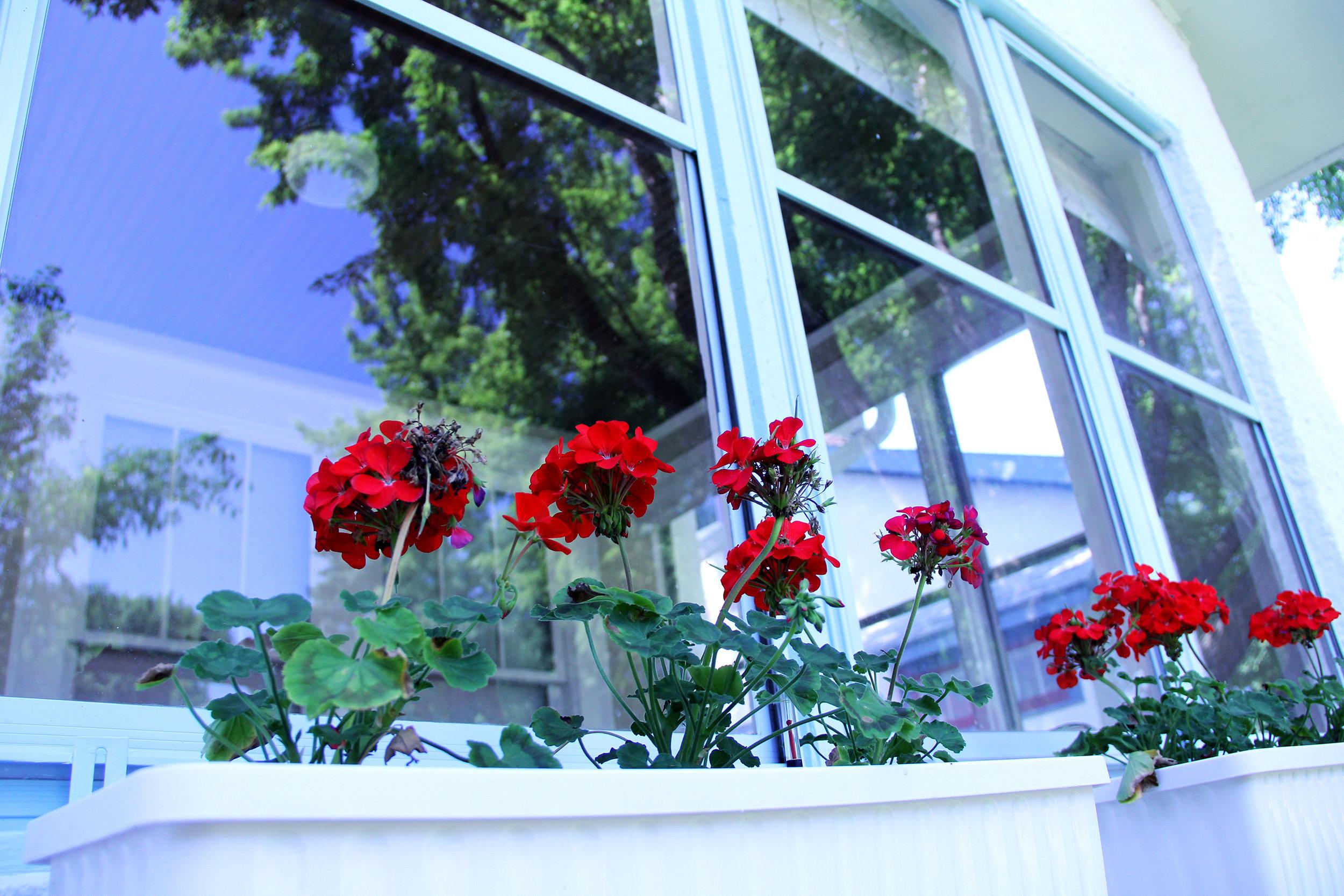 front-porch_27740777565_o.jpg