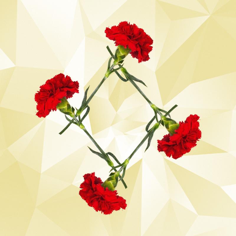 Karnation-Diamond-Interlocking.jpg