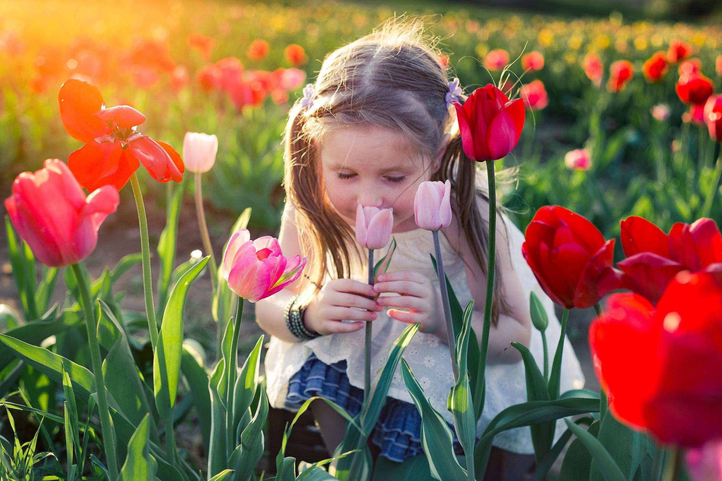 child-flowers-charlotte-photographer