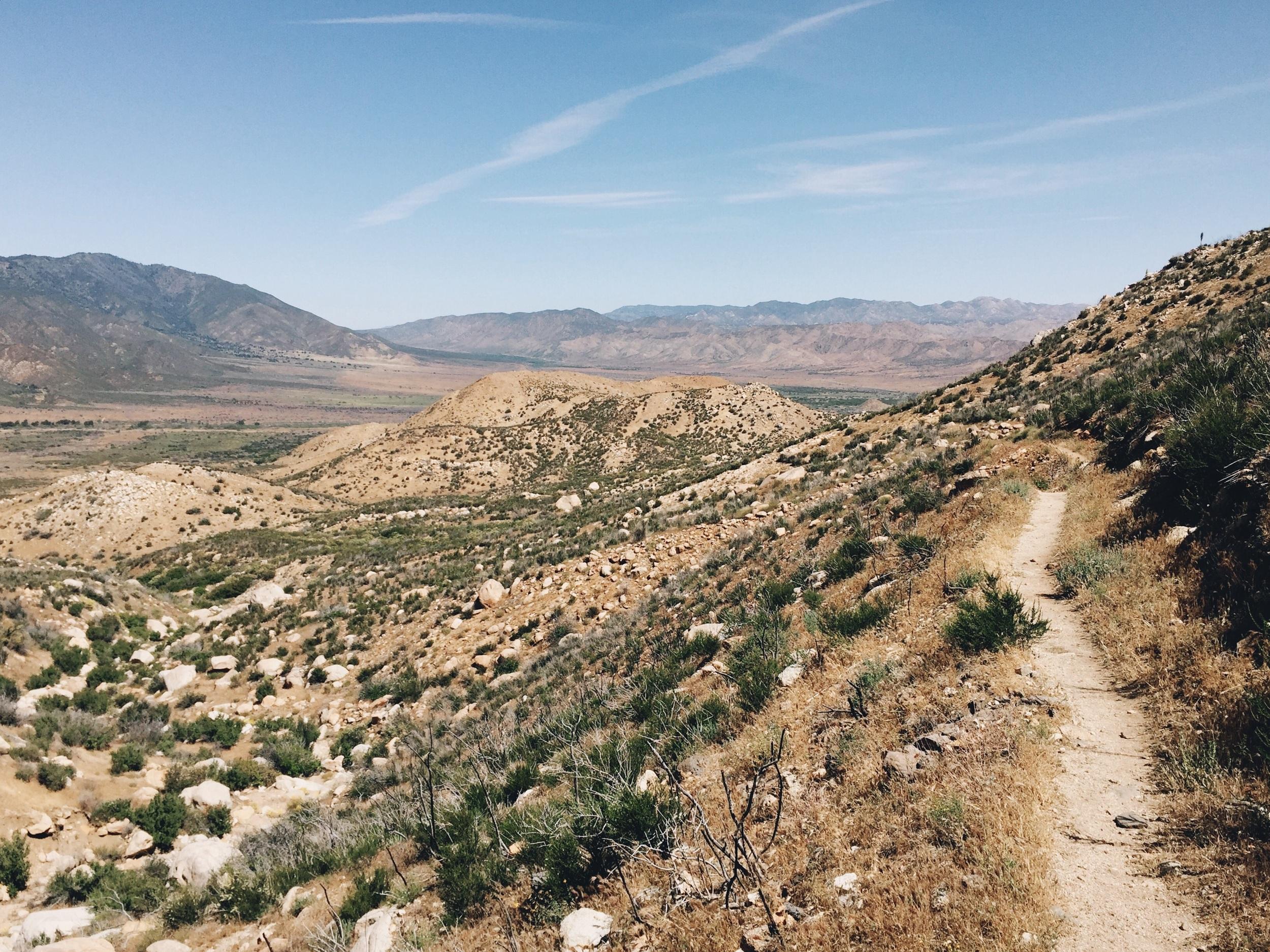 Walking into desert land.
