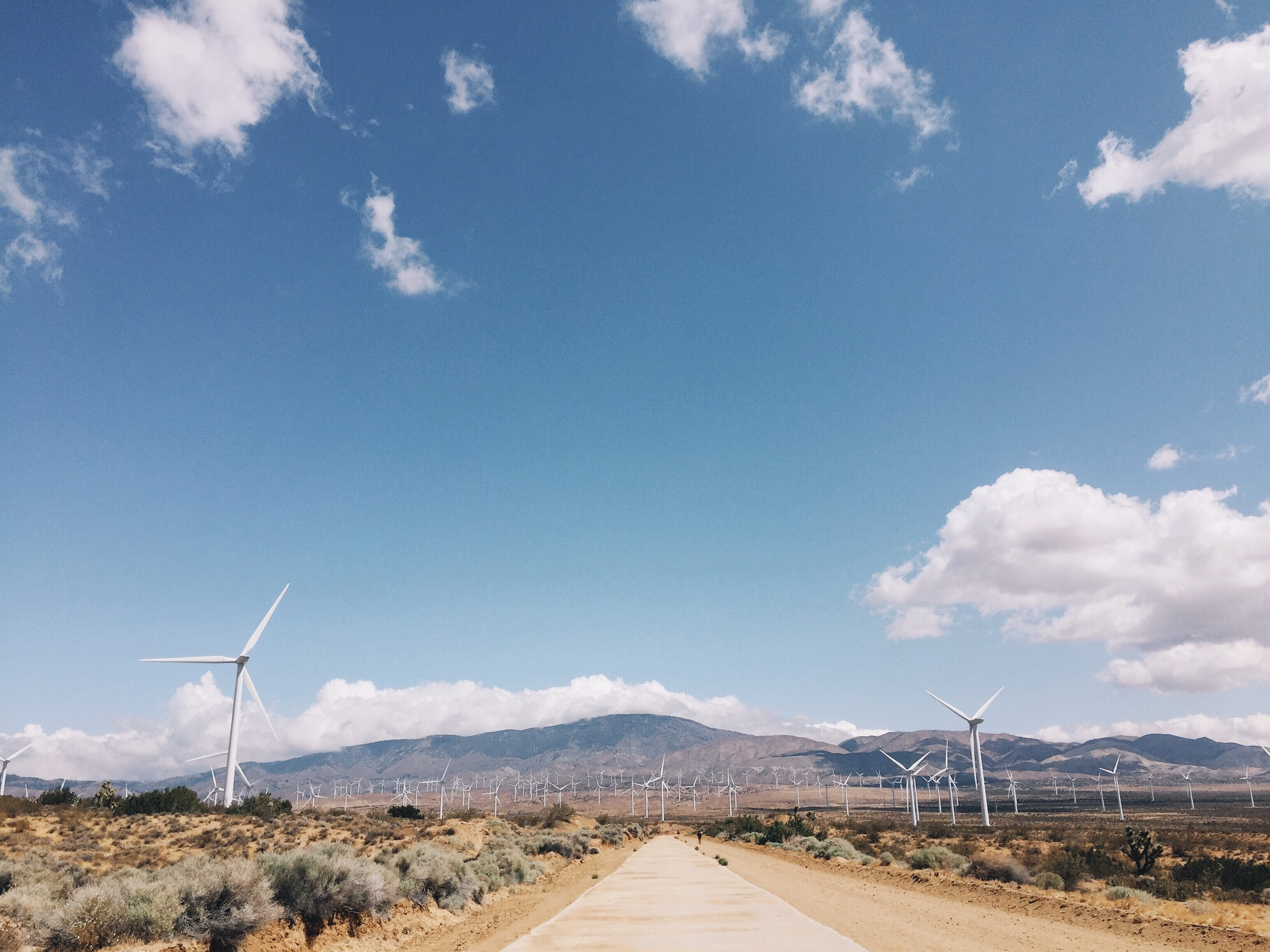 Entering the wind farm.