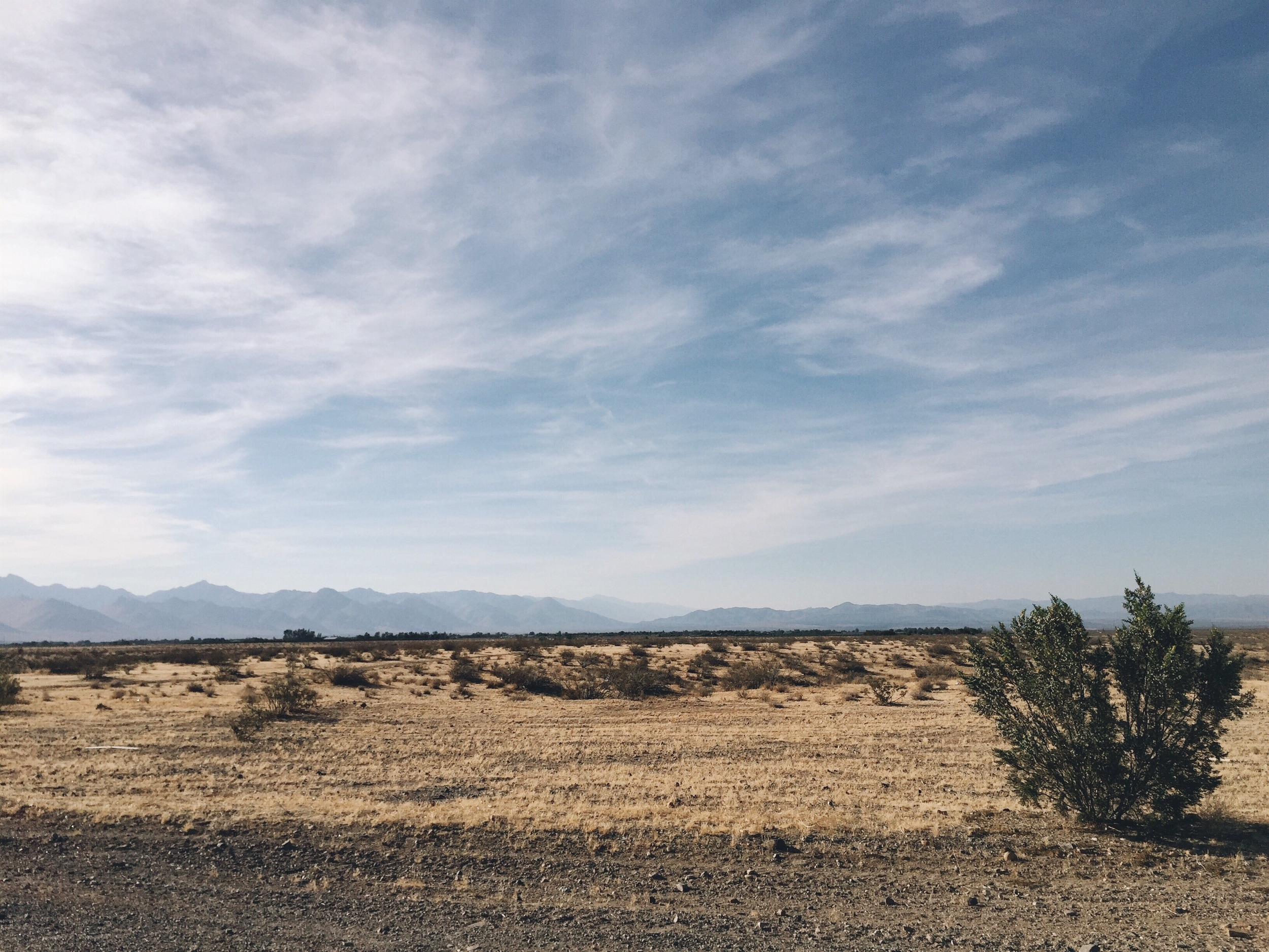 The view of the drive into the inyokern country.