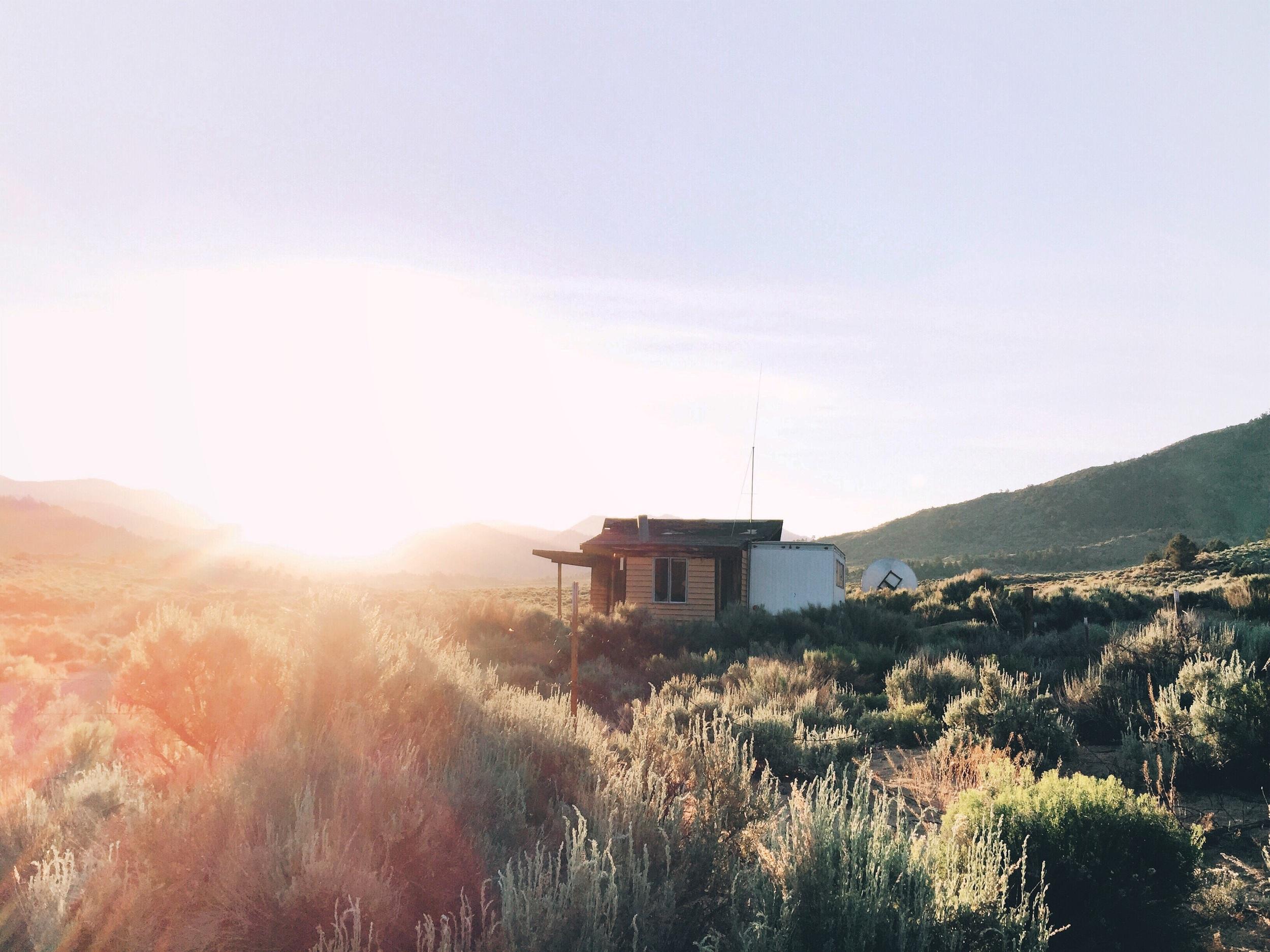 Sun peering through an abandoned shack.