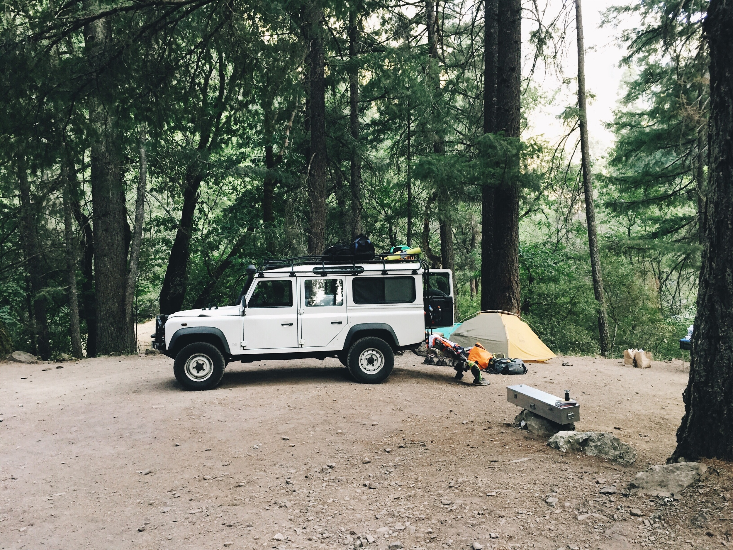 Saw a schmancy car at mccloud campground.