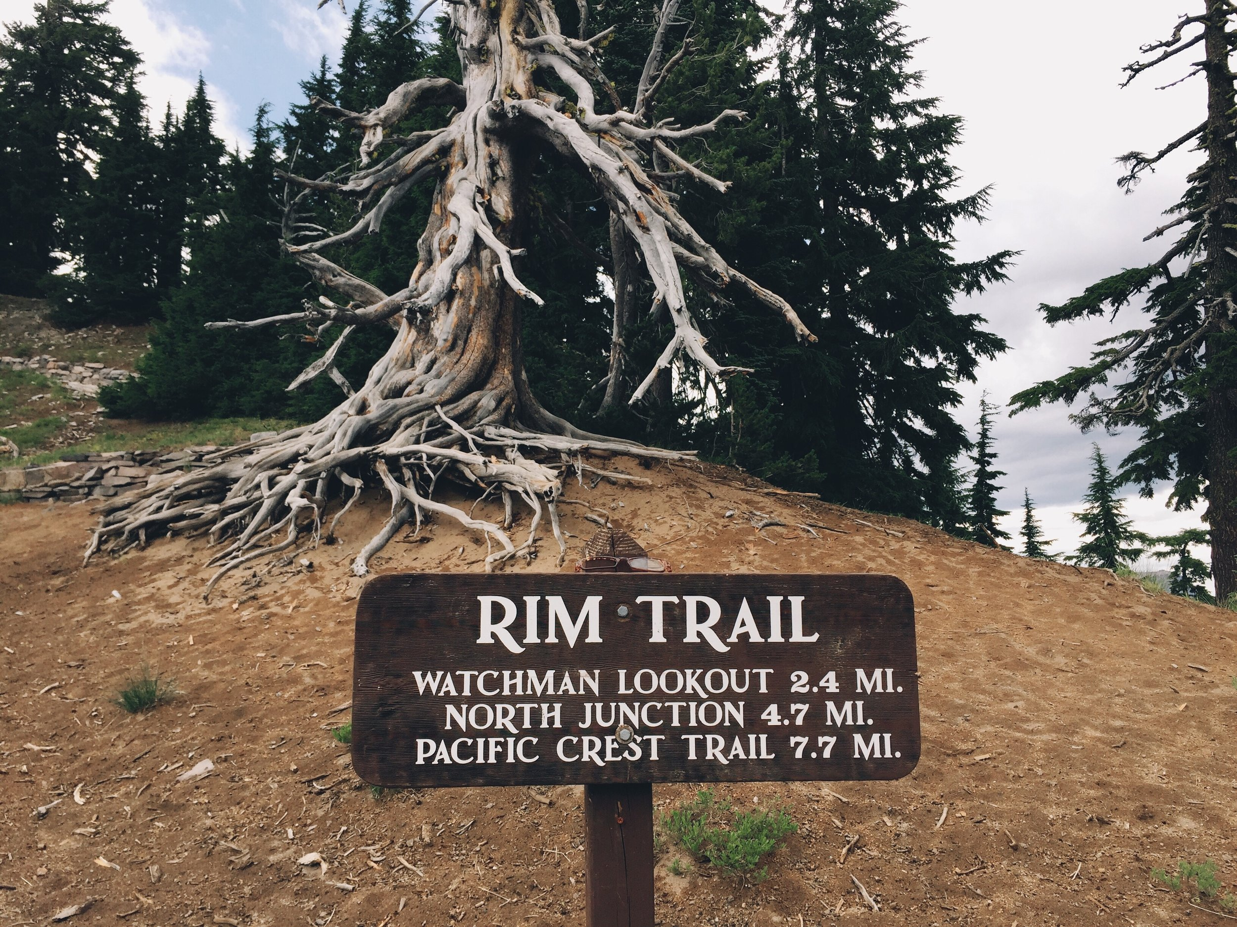 The rim trail is the way to go.