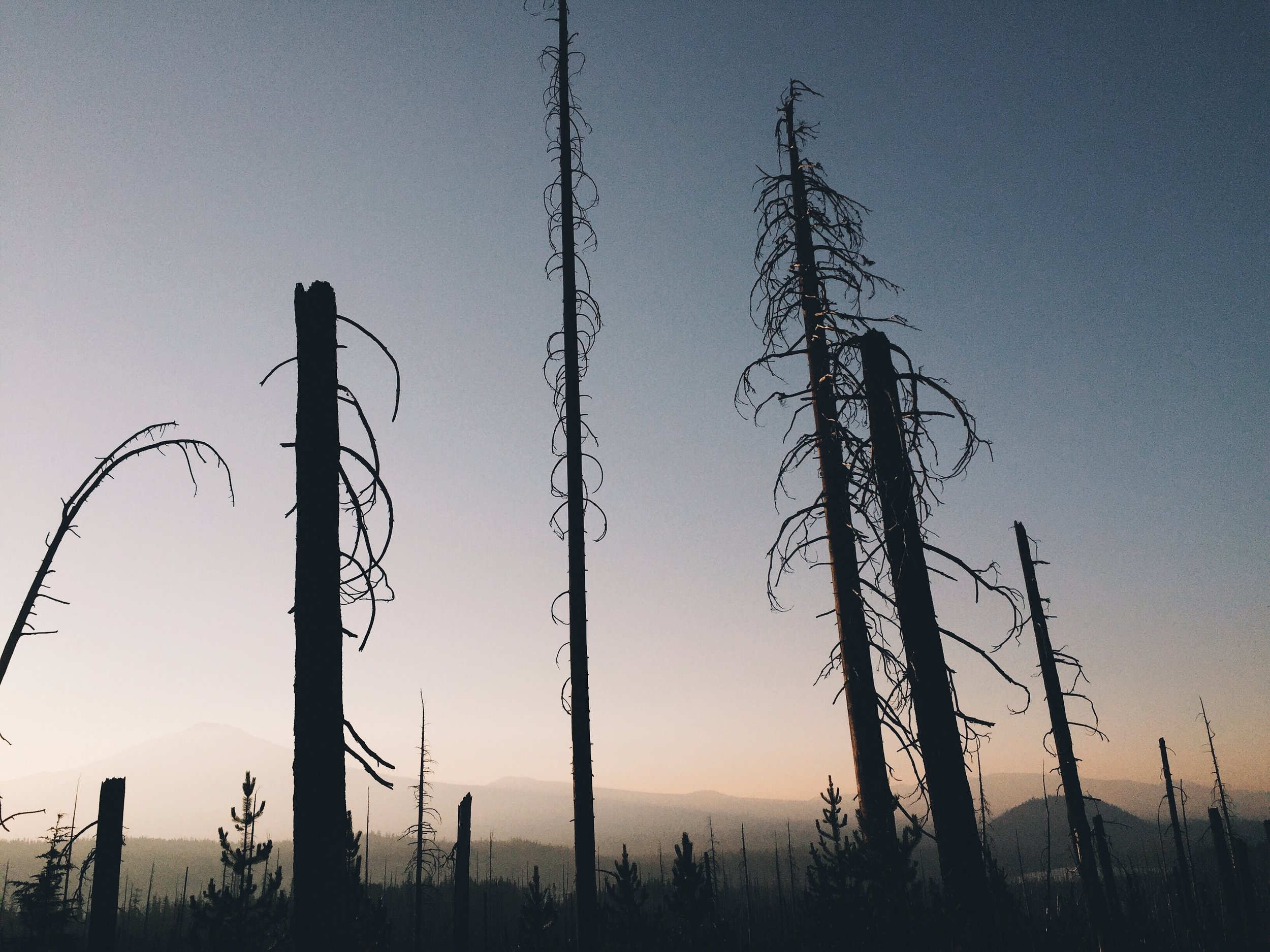 smoke at the junction of elk lake