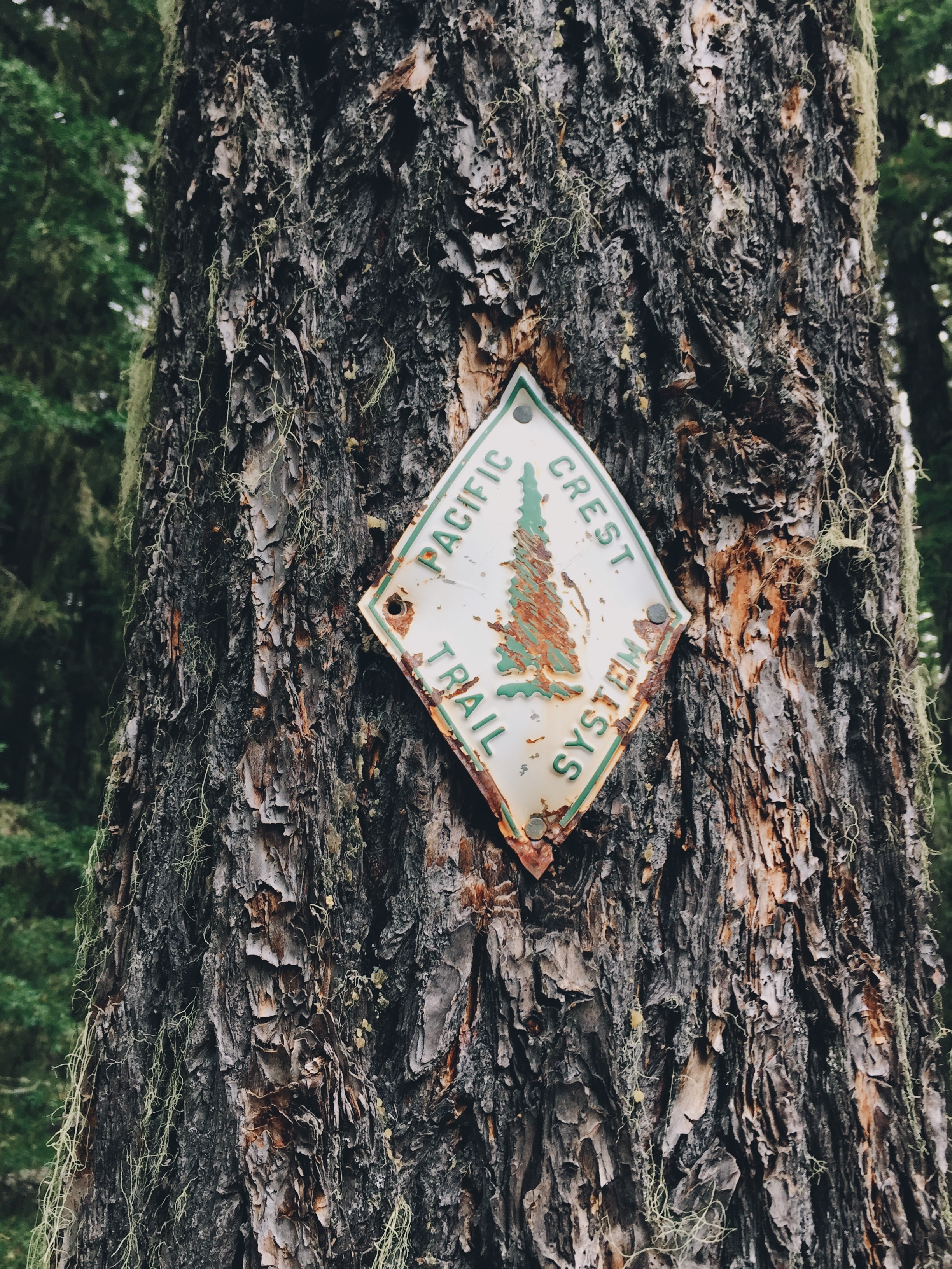 Old trail markers