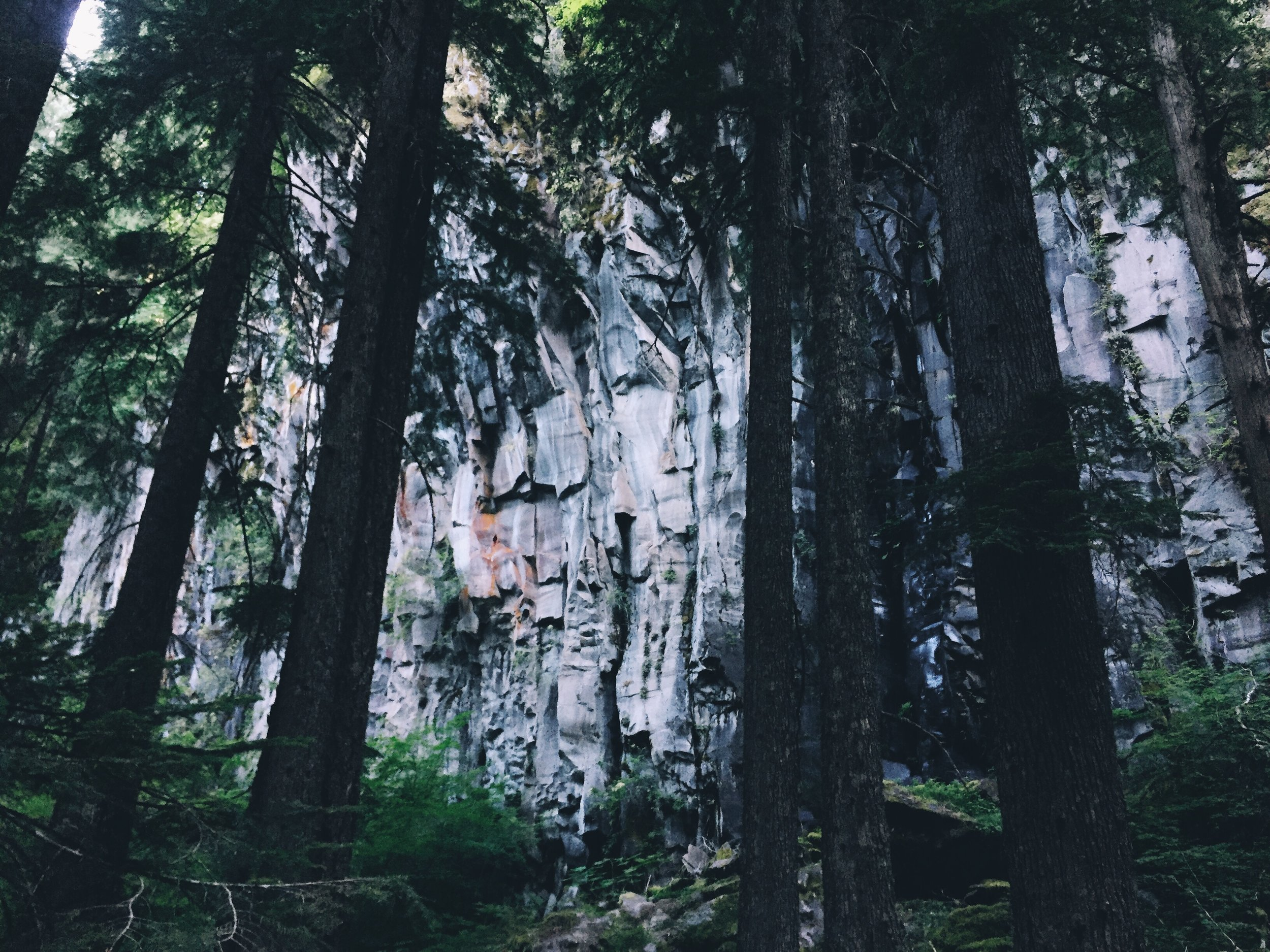 pretty rock through the trees.