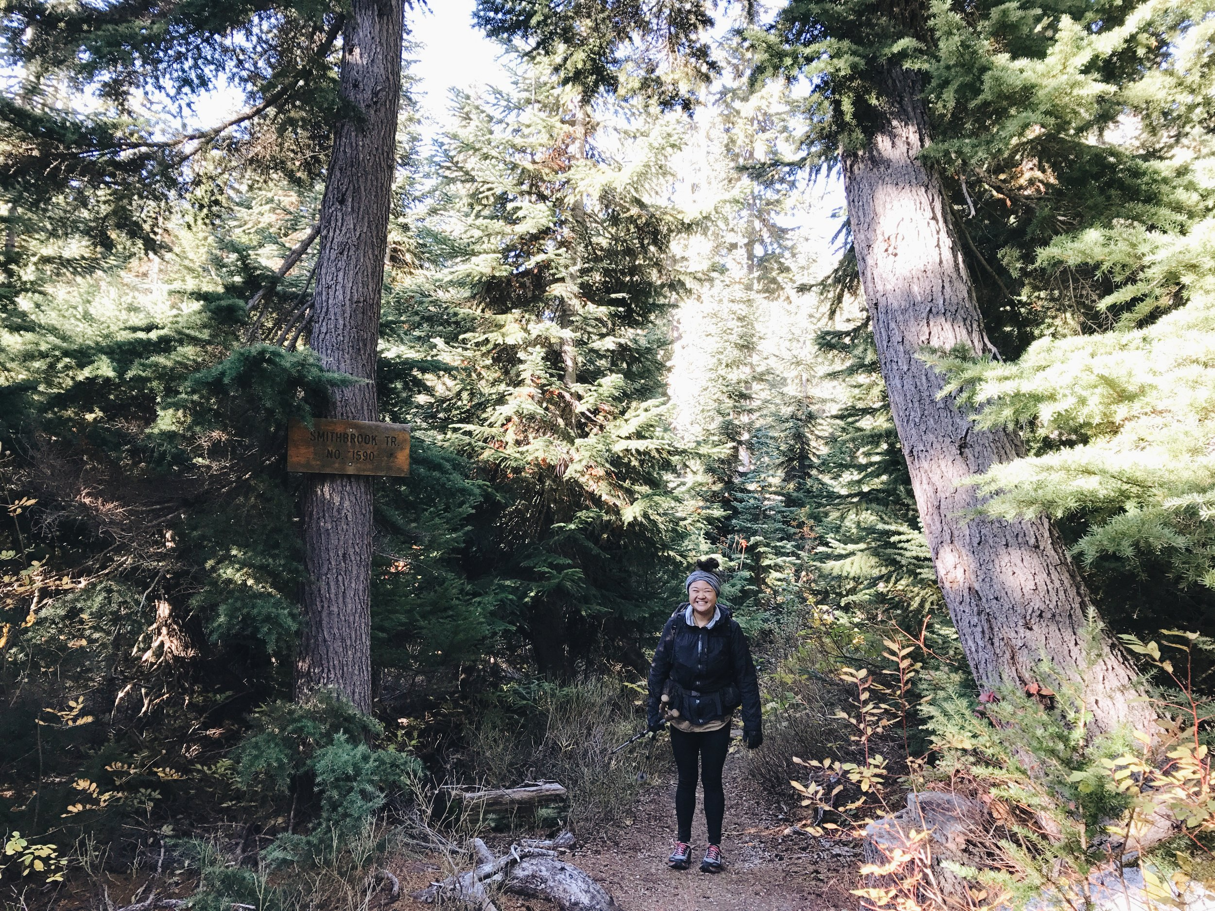 Sept 2016, I hiked on the PCT for the first time after injury outside of Stevens. Taken by Ariana.