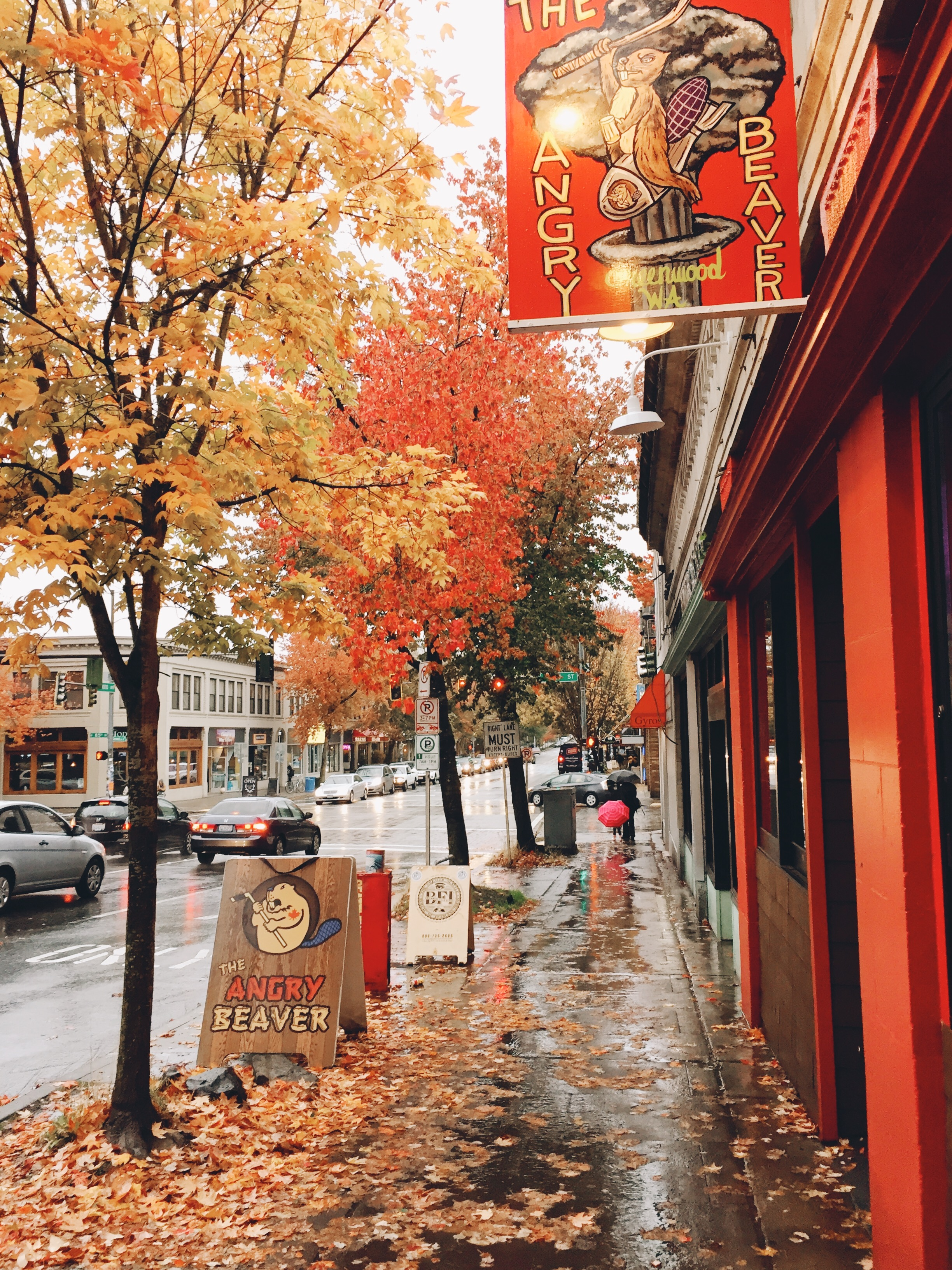 Fall is so beautiful in Seattle.