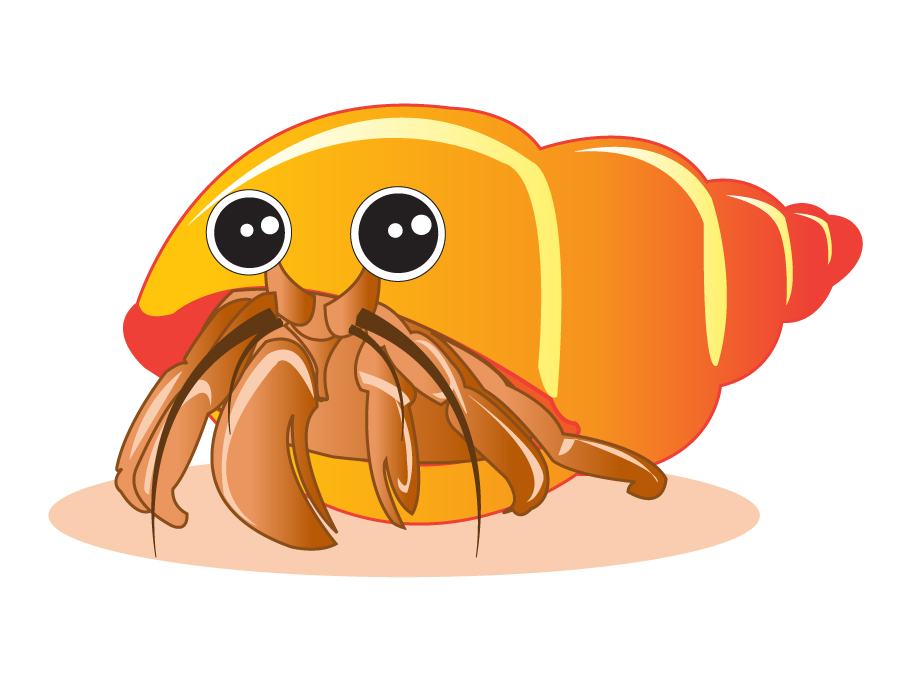 Draw-a-Hermit-Crab-Step-8.jpg