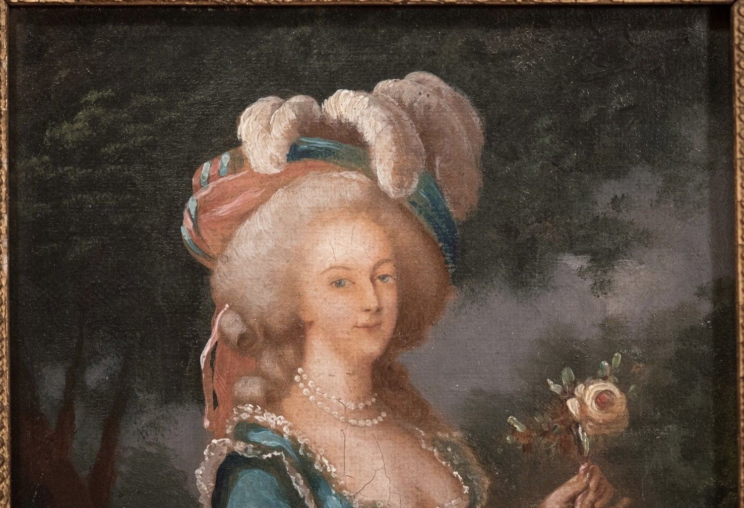 6 Sizes! Queen of France Navarre Rose Portrait of Marie Antoinette New Photo