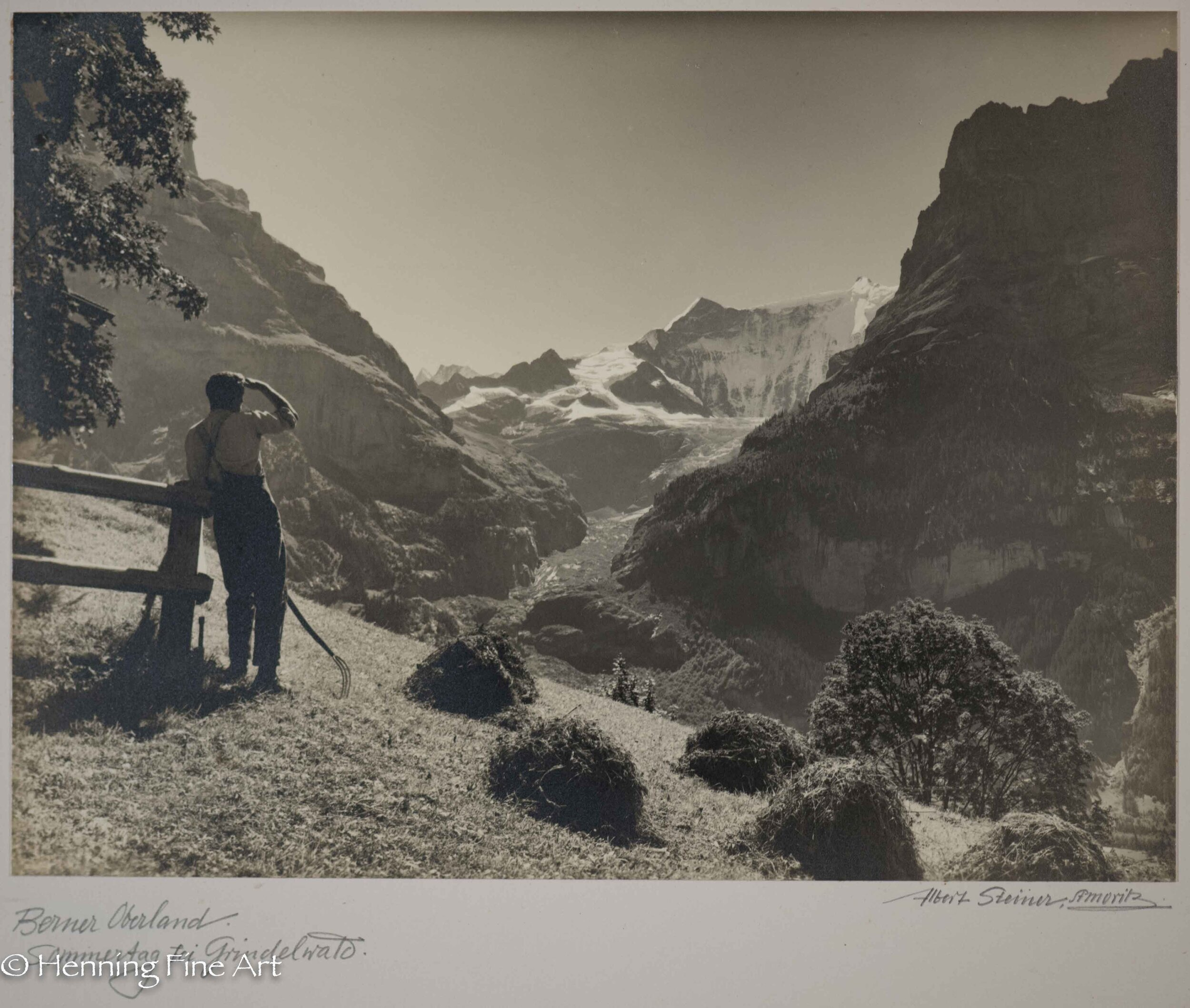 The Albert Steiner Collection - 39 Outstanding Views of Switzerland