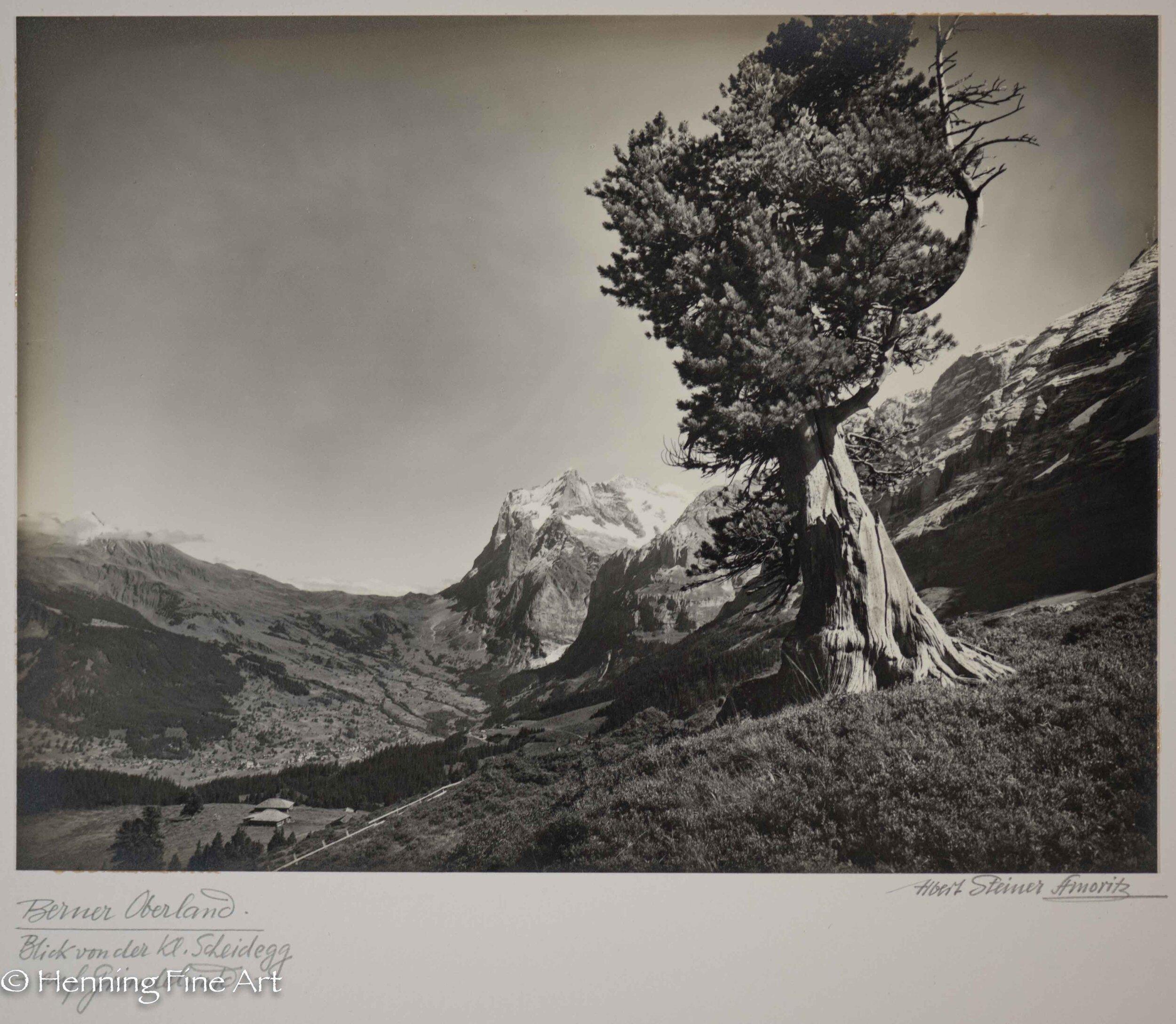 """Albert Steiner (1877 - 1965) """"Berner Oberland. Blick der kl. Scheidegg auf Grindelwald - Wetterhorn.""""  Image (5-3)"""