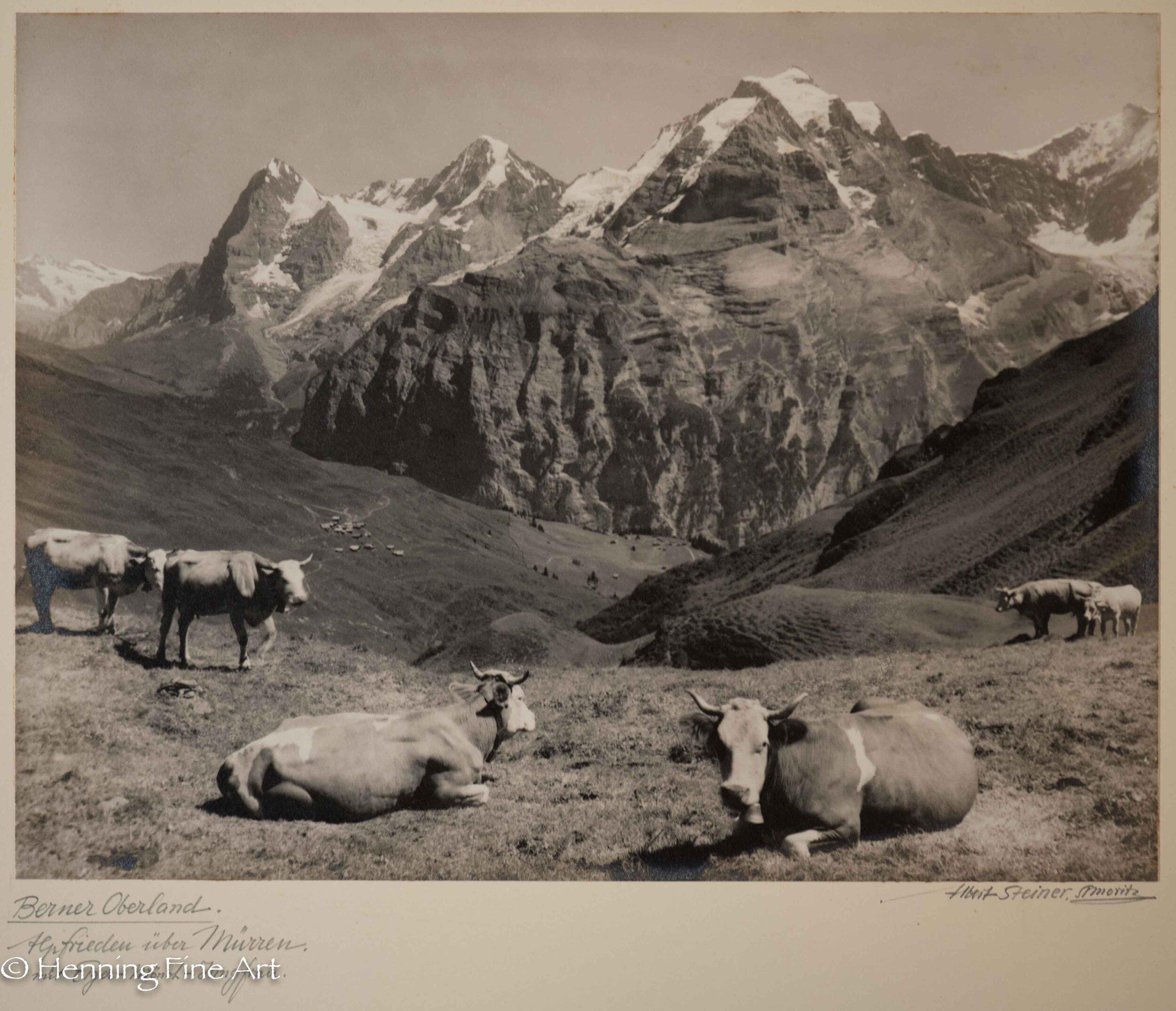 """Albert Steiner (1877 - 1965) """"Berner Oberland. Alpfrieden uber Murren -Eiger-Monch-Jungfrau.-""""  Image (6-6)"""