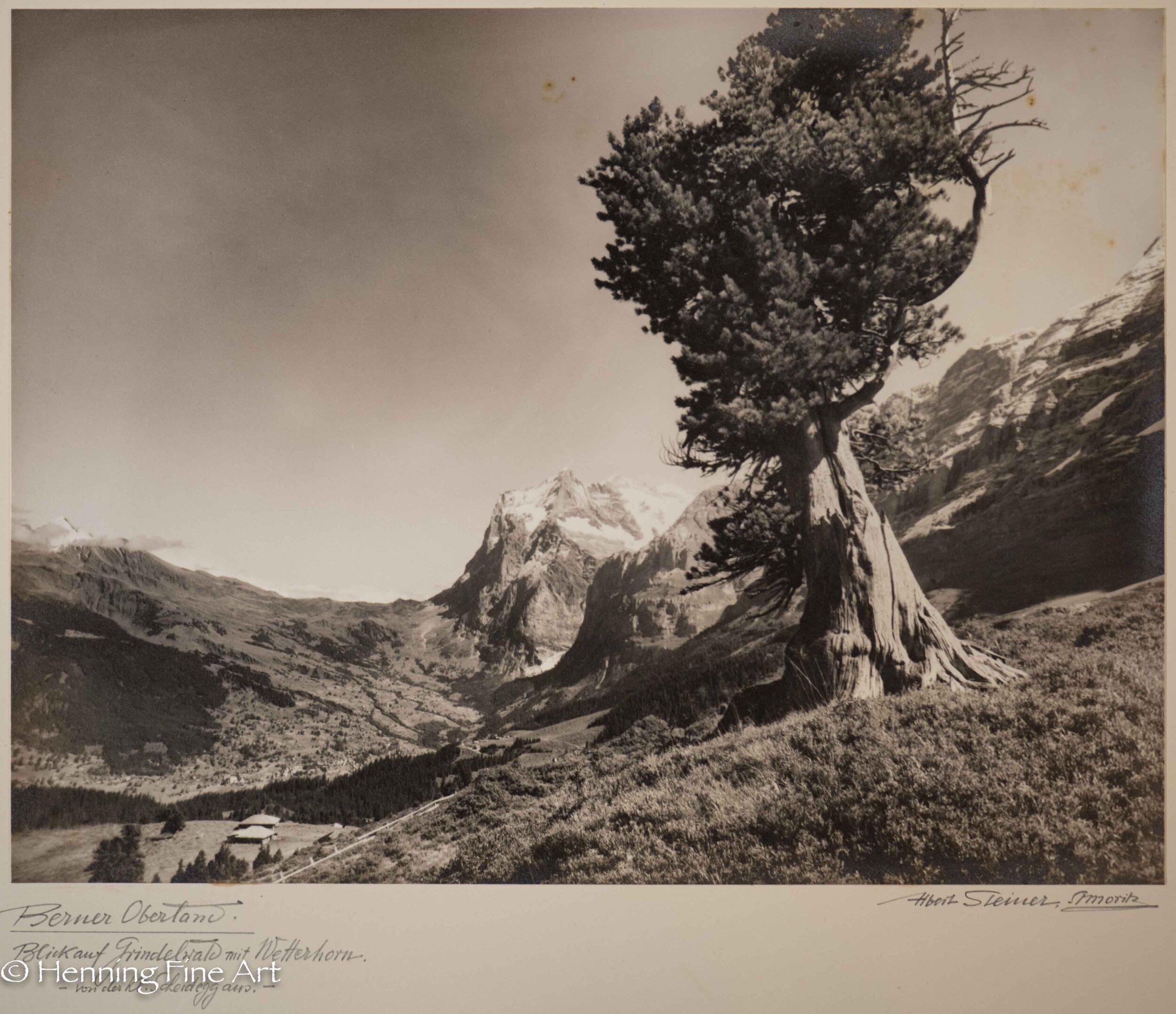"""Albert Steiner (1877 - 1965) """"Berner Oberland. Blick auf Grindelwald mit Wetterhorn. - von der Kl. Scheidegg aus.-""""  Image (6-8)"""