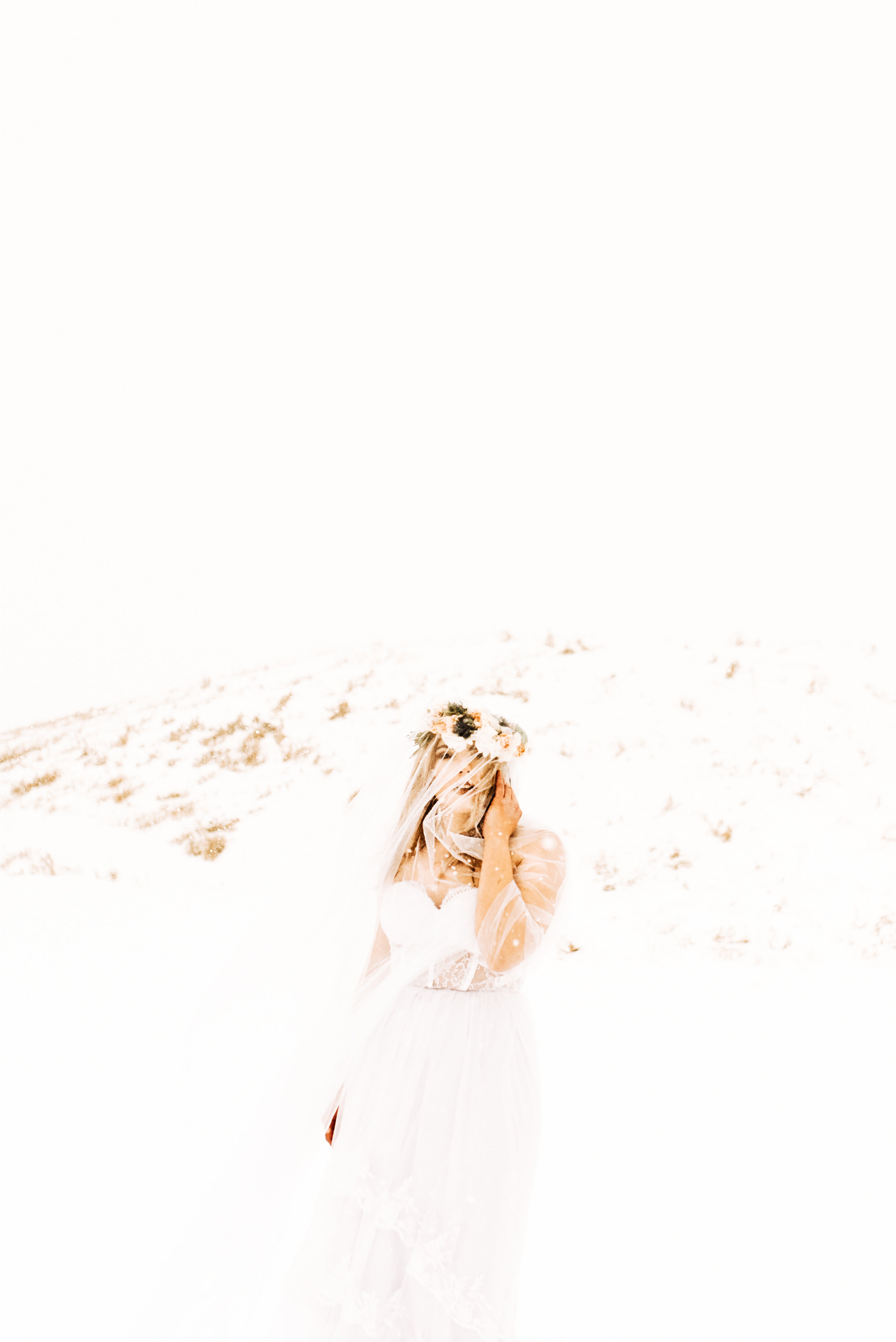 ShelbyTaylorPhotography-7.jpg
